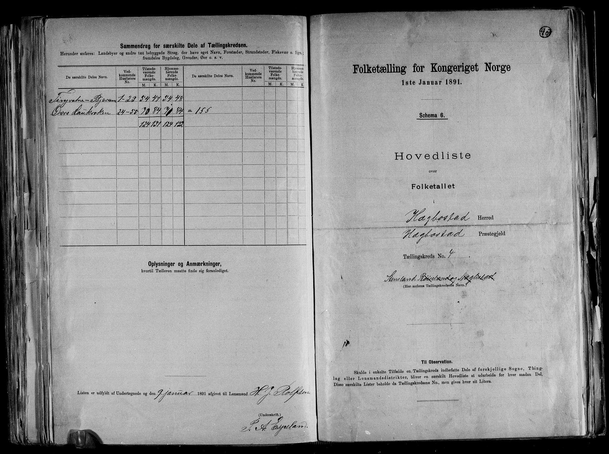 RA, Folketelling 1891 for 1034 Hægebostad herred, 1891, s. 11