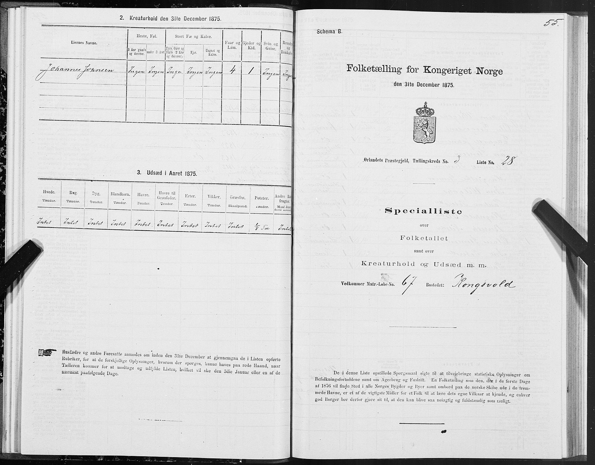 SAT, Folketelling 1875 for 1621P Ørland prestegjeld, 1875, s. 2055