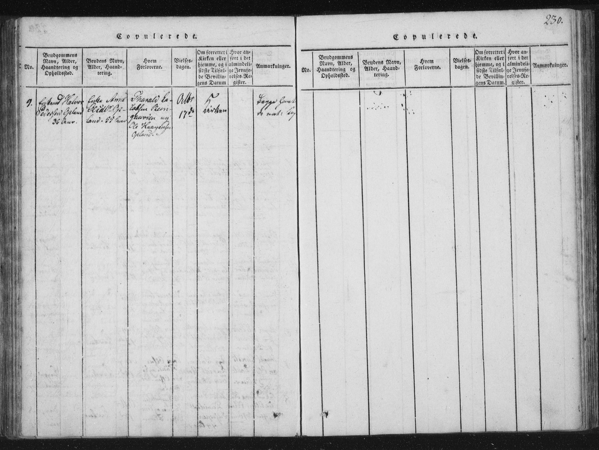 SAT, Ministerialprotokoller, klokkerbøker og fødselsregistre - Nord-Trøndelag, 773/L0609: Ministerialbok nr. 773A03 /3, 1815-1830, s. 230