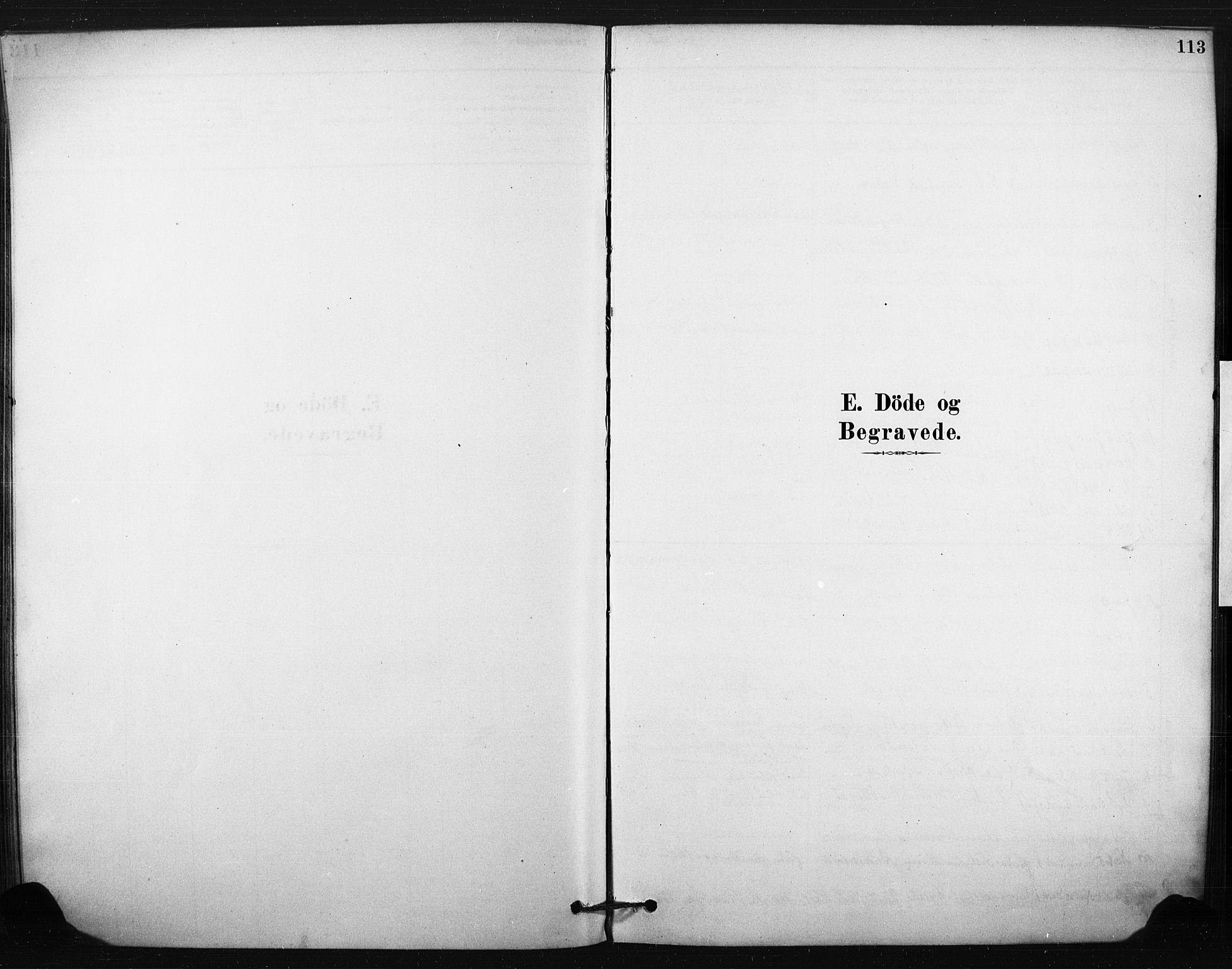 SAKO, Eiker kirkebøker, F/Fc/L0001: Ministerialbok nr. III 1, 1878-1889, s. 113