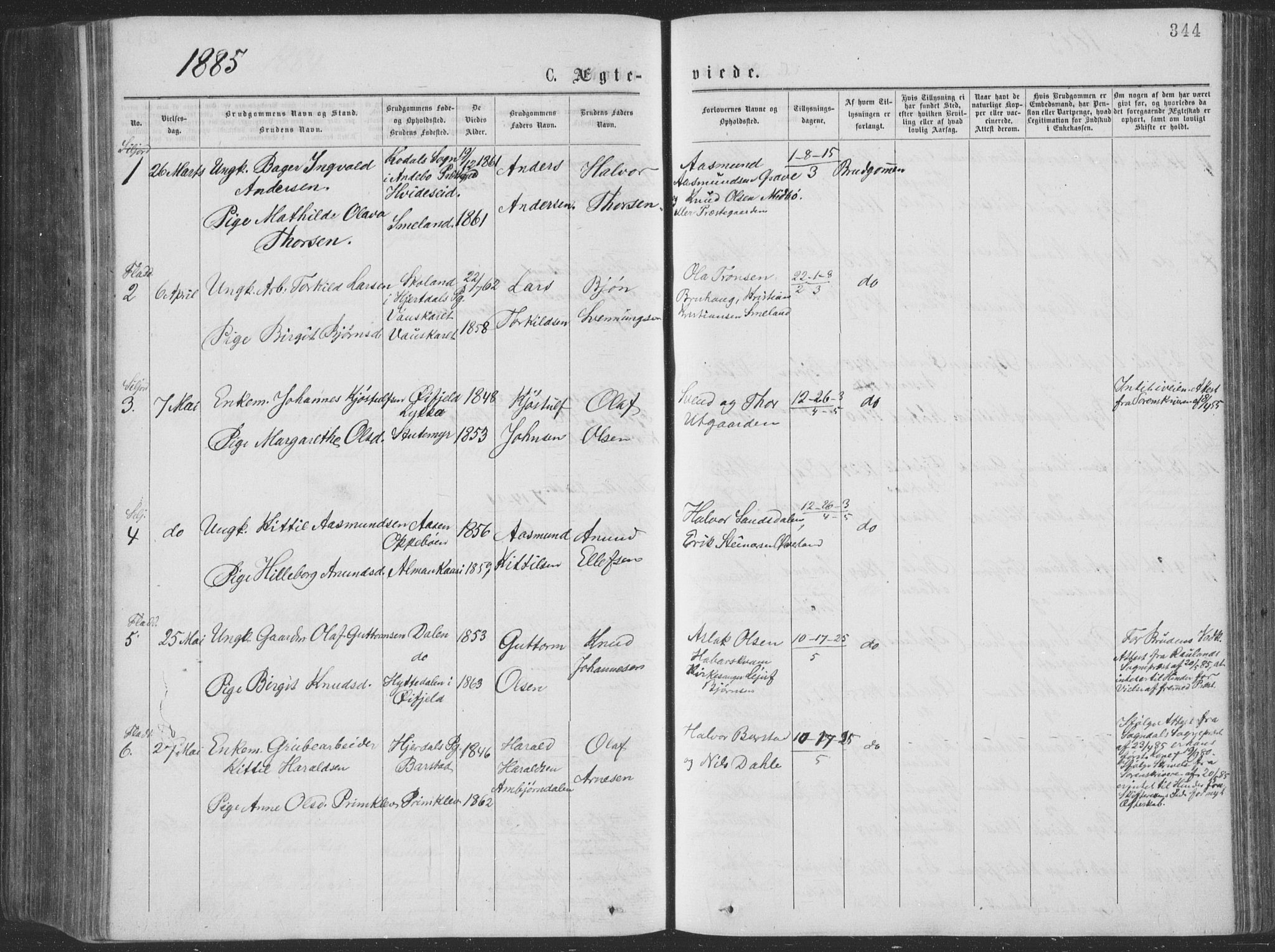 SAKO, Seljord kirkebøker, F/Fa/L0014: Ministerialbok nr. I 14, 1877-1886, s. 344