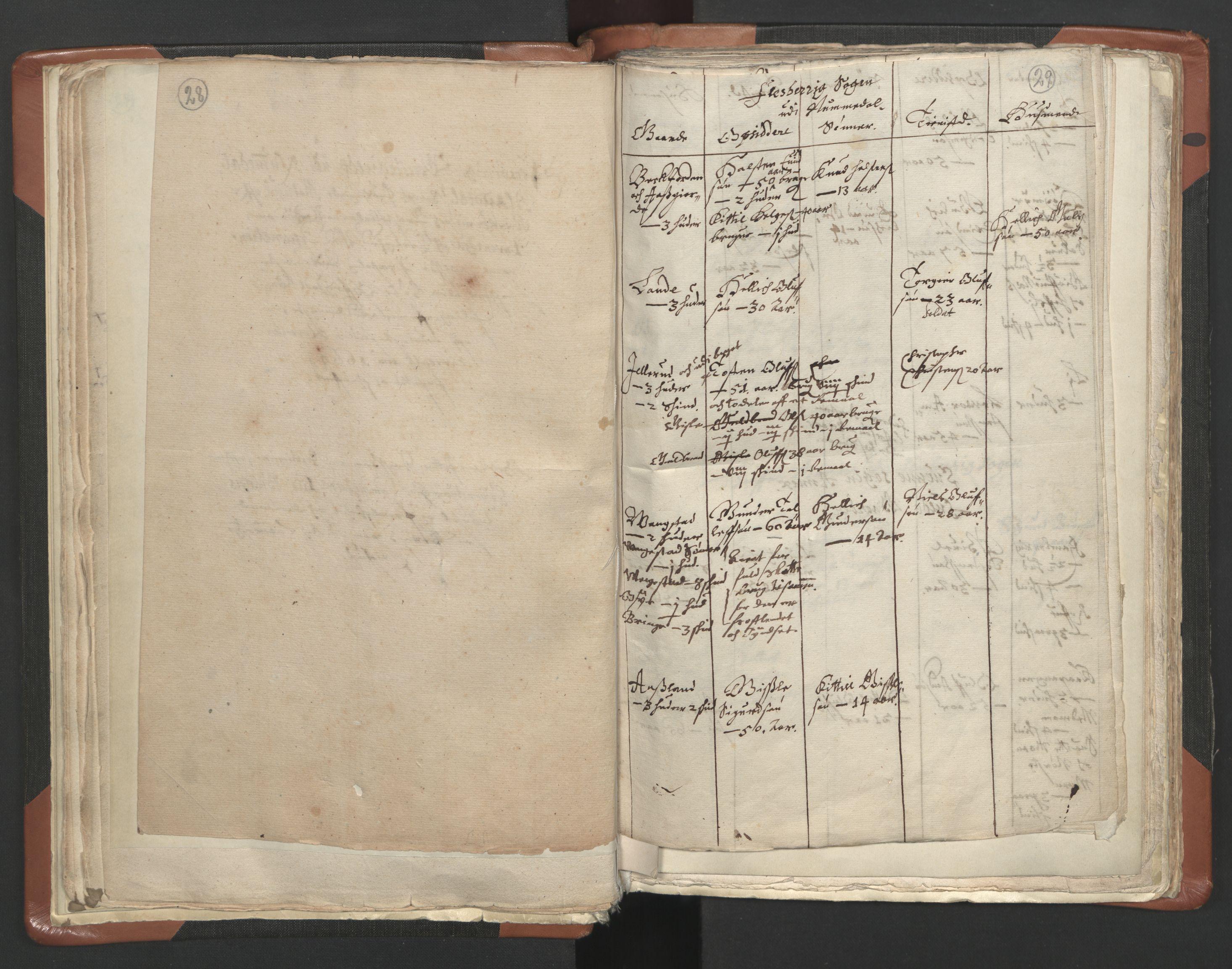 RA, Sogneprestenes manntall 1664-1666, nr. 10: Tønsberg prosti, 1664-1666, s. 28-29
