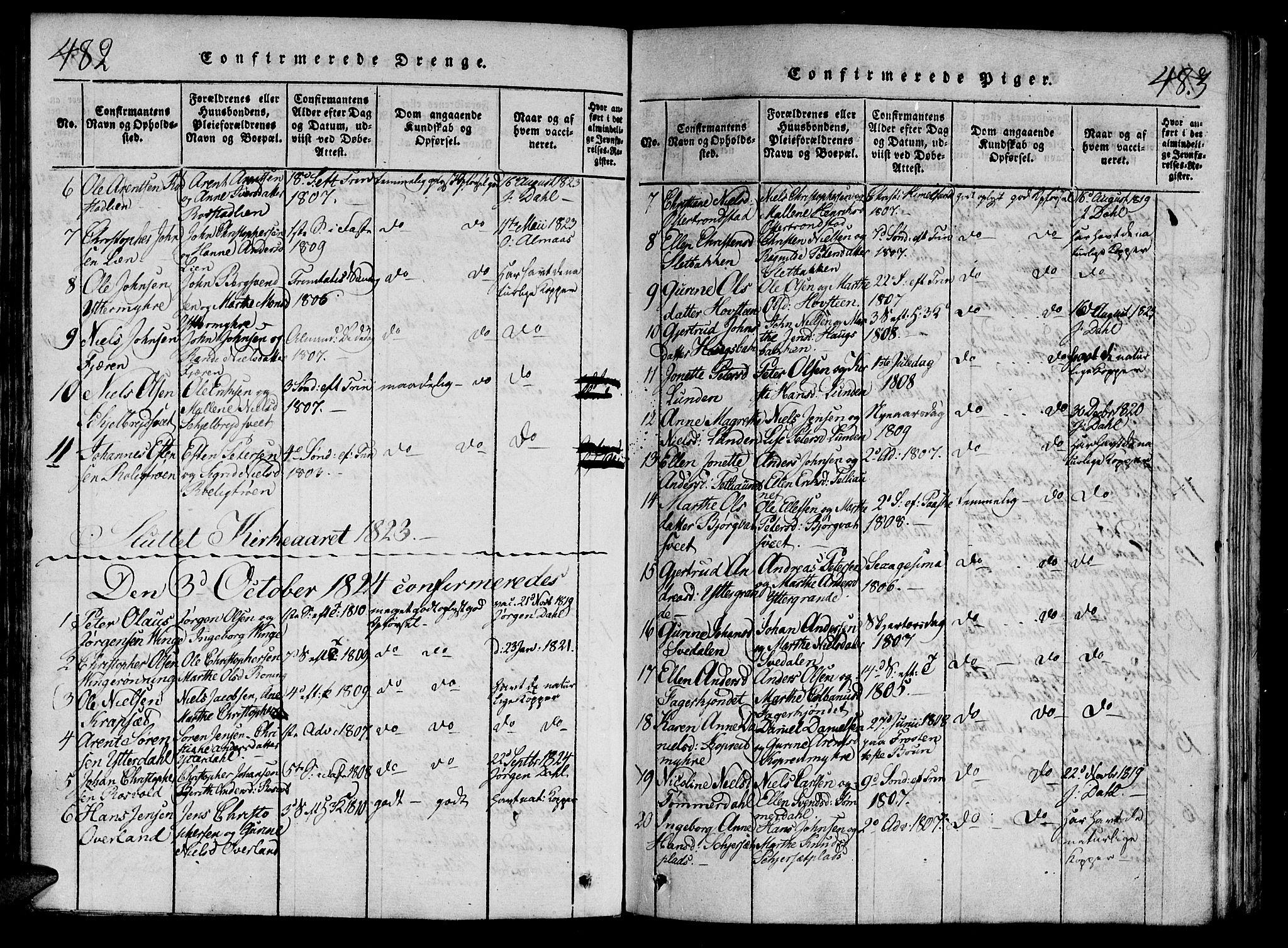 SAT, Ministerialprotokoller, klokkerbøker og fødselsregistre - Nord-Trøndelag, 701/L0005: Ministerialbok nr. 701A05 /1, 1816-1825, s. 482-483