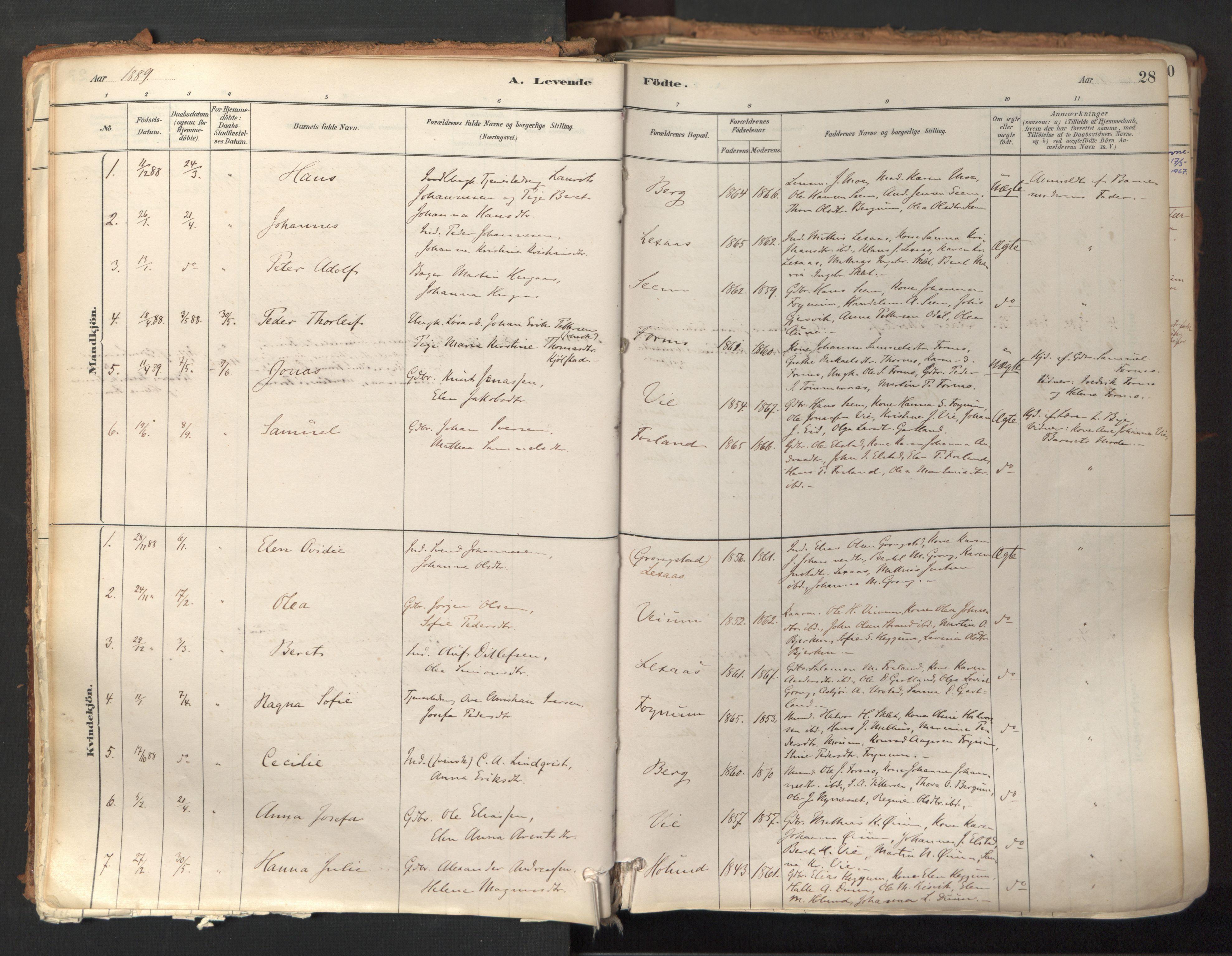 SAT, Ministerialprotokoller, klokkerbøker og fødselsregistre - Nord-Trøndelag, 758/L0519: Ministerialbok nr. 758A04, 1880-1926, s. 28