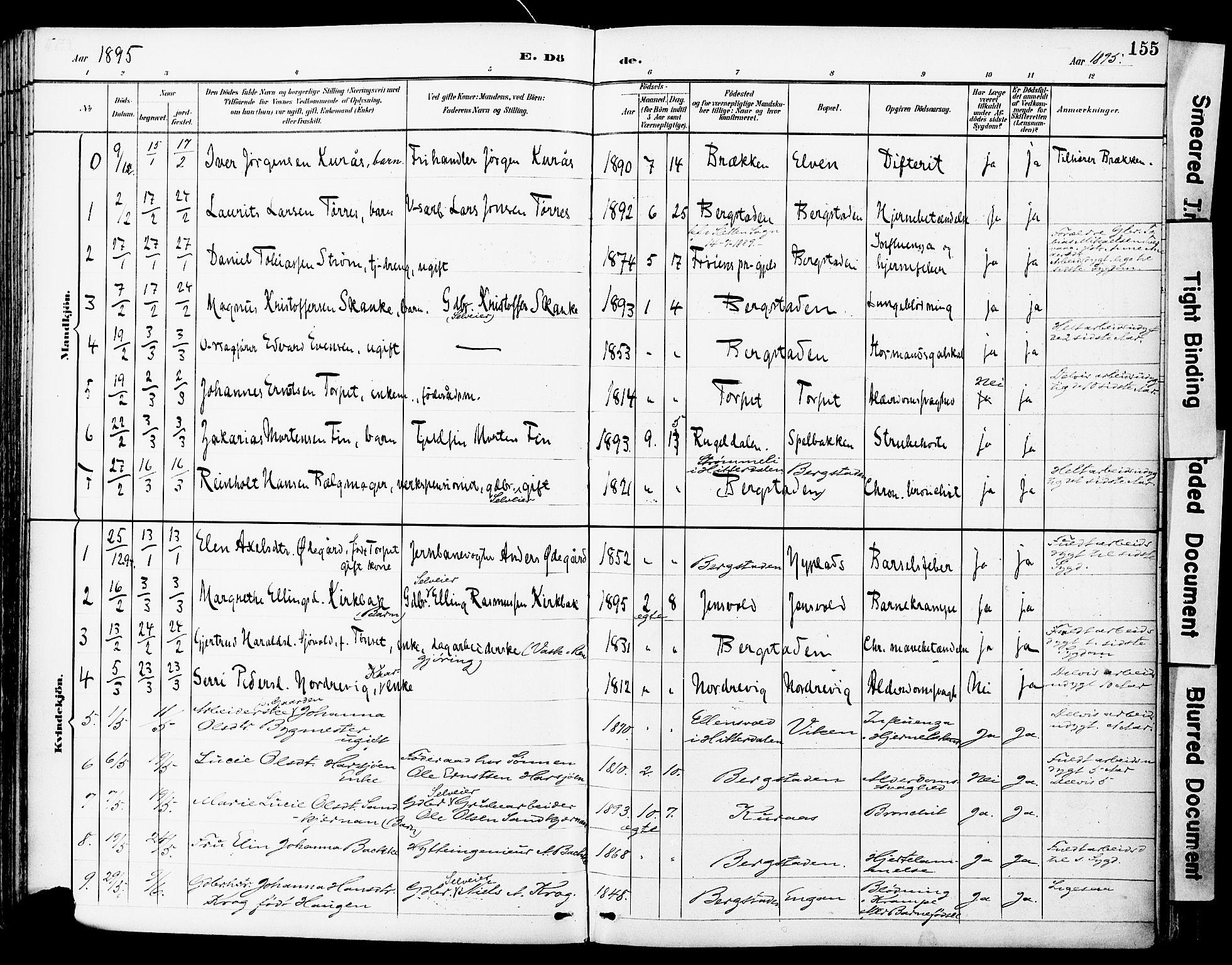 SAT, Ministerialprotokoller, klokkerbøker og fødselsregistre - Sør-Trøndelag, 681/L0935: Ministerialbok nr. 681A13, 1890-1898, s. 155