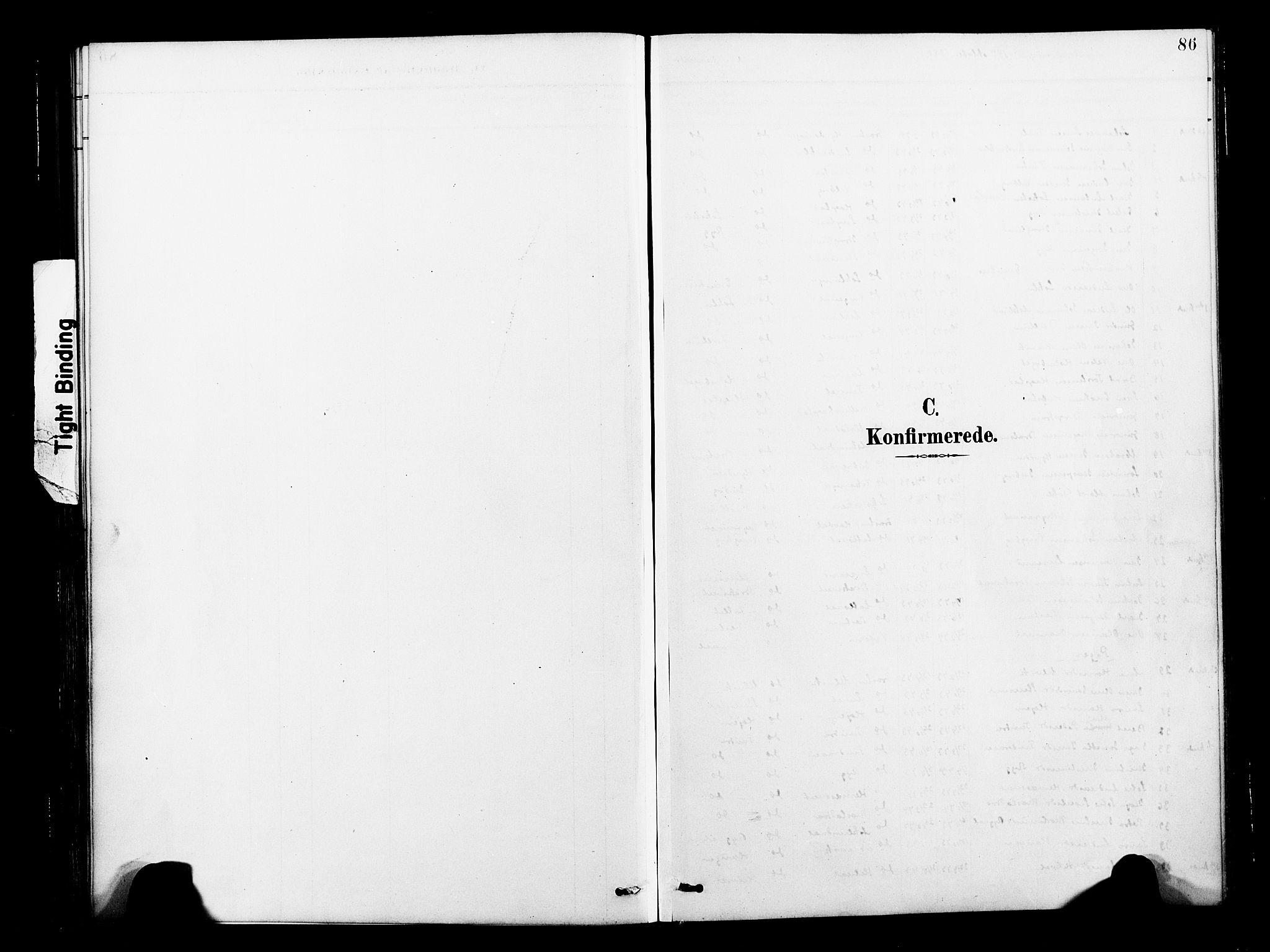 SAT, Ministerialprotokoller, klokkerbøker og fødselsregistre - Nord-Trøndelag, 713/L0121: Ministerialbok nr. 713A10, 1888-1898, s. 86