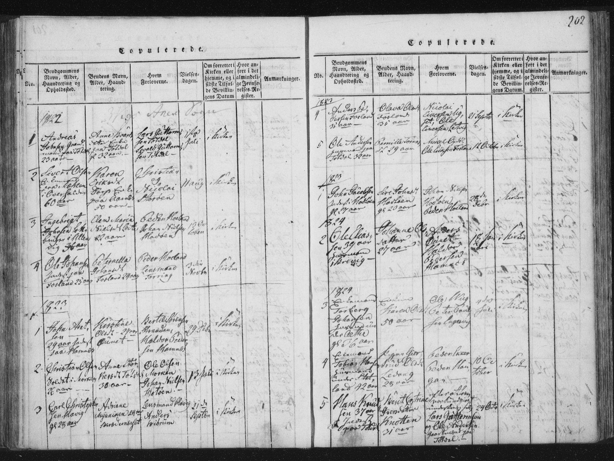 SAT, Ministerialprotokoller, klokkerbøker og fødselsregistre - Nord-Trøndelag, 773/L0609: Ministerialbok nr. 773A03 /2, 1815-1830, s. 202