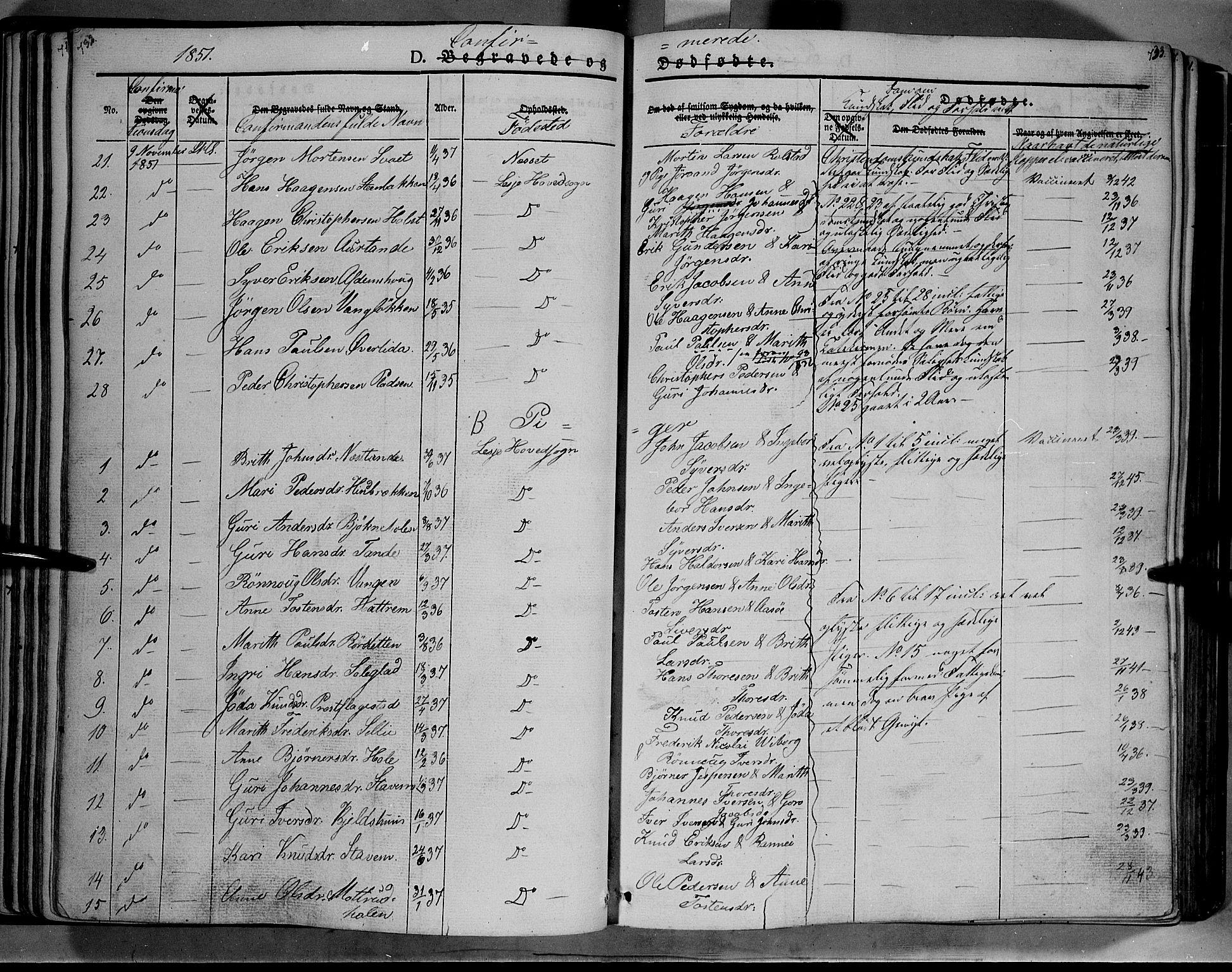 SAH, Lesja prestekontor, Ministerialbok nr. 6B, 1843-1854, s. 732-733