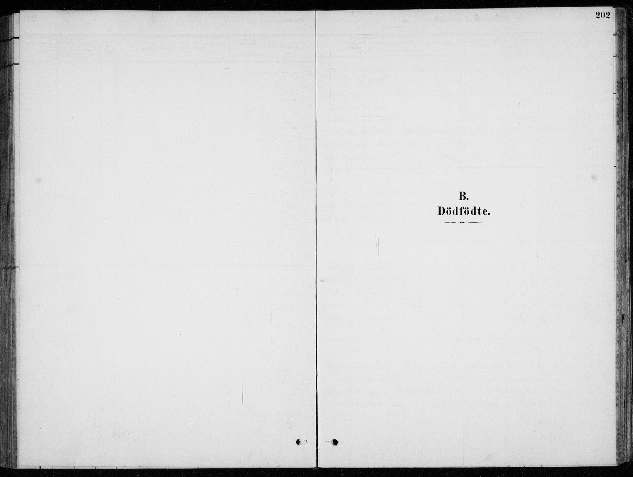 SAST, Strand sokneprestkontor, H/Ha/Hab/L0004: Klokkerbok nr. B 4, 1878-1903, s. 202