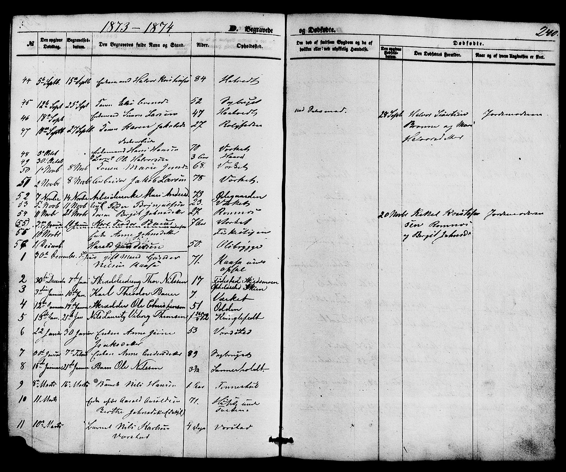 SAKO, Holla kirkebøker, F/Fa/L0007: Ministerialbok nr. 7, 1869-1881, s. 240