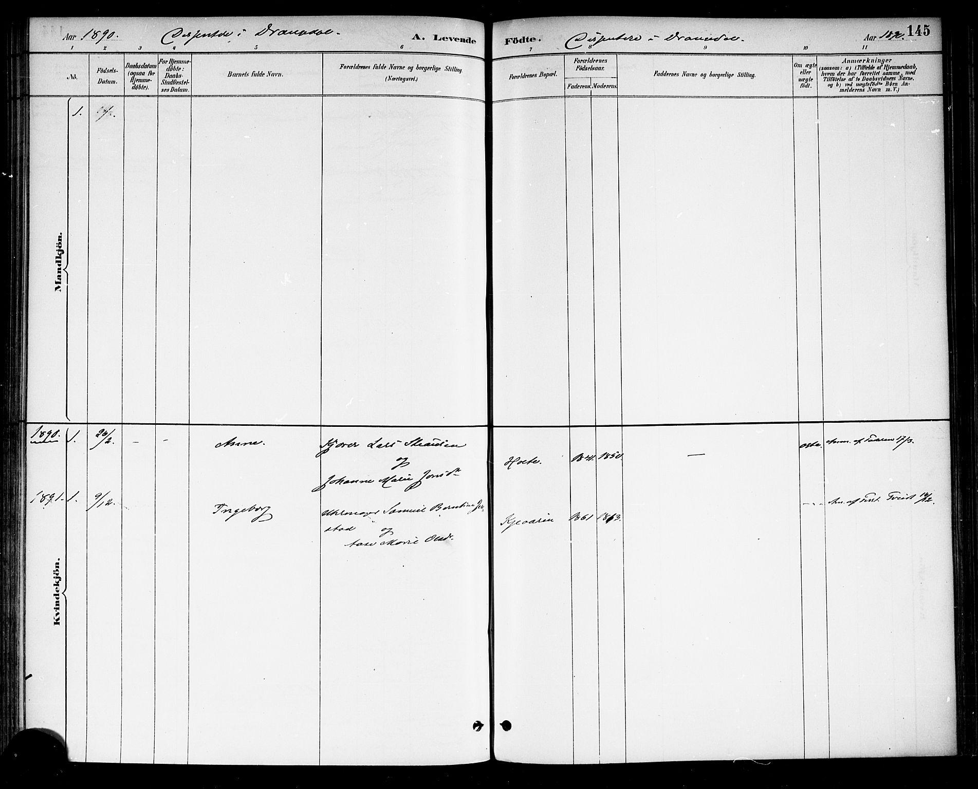 SAKO, Drangedal kirkebøker, F/Fa/L0010: Ministerialbok nr. 10 /1, 1885-1894, s. 145