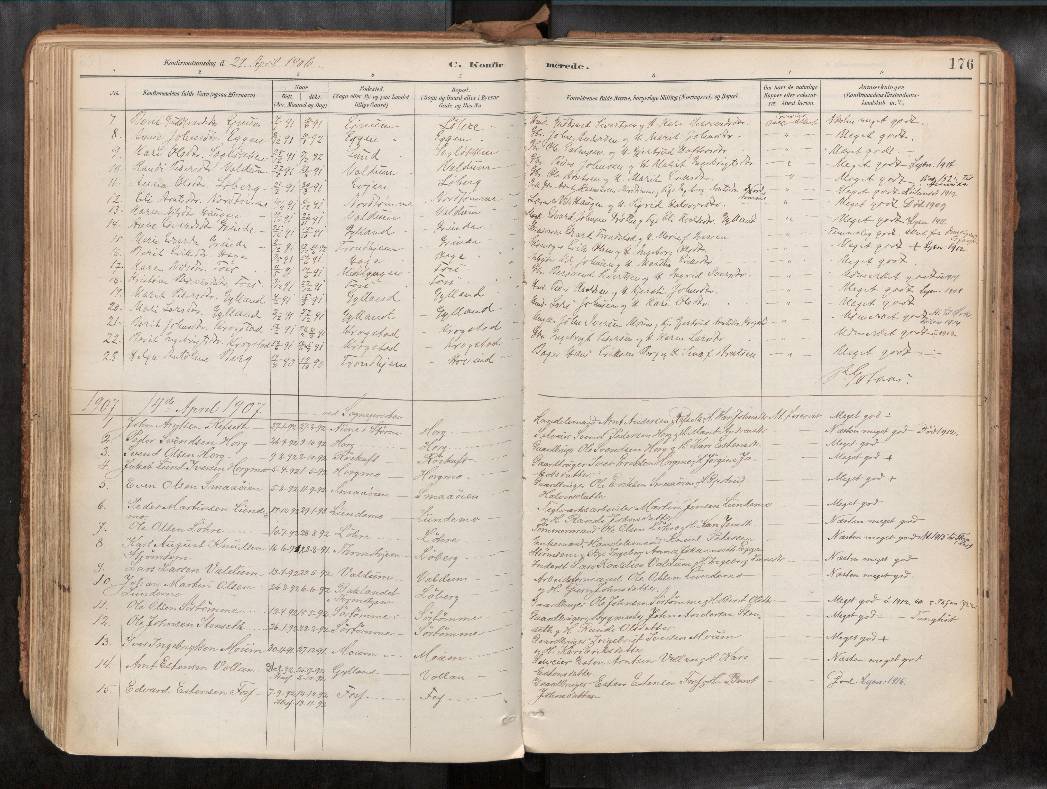SAT, Ministerialprotokoller, klokkerbøker og fødselsregistre - Sør-Trøndelag, 692/L1105b: Ministerialbok nr. 692A06, 1891-1934, s. 176