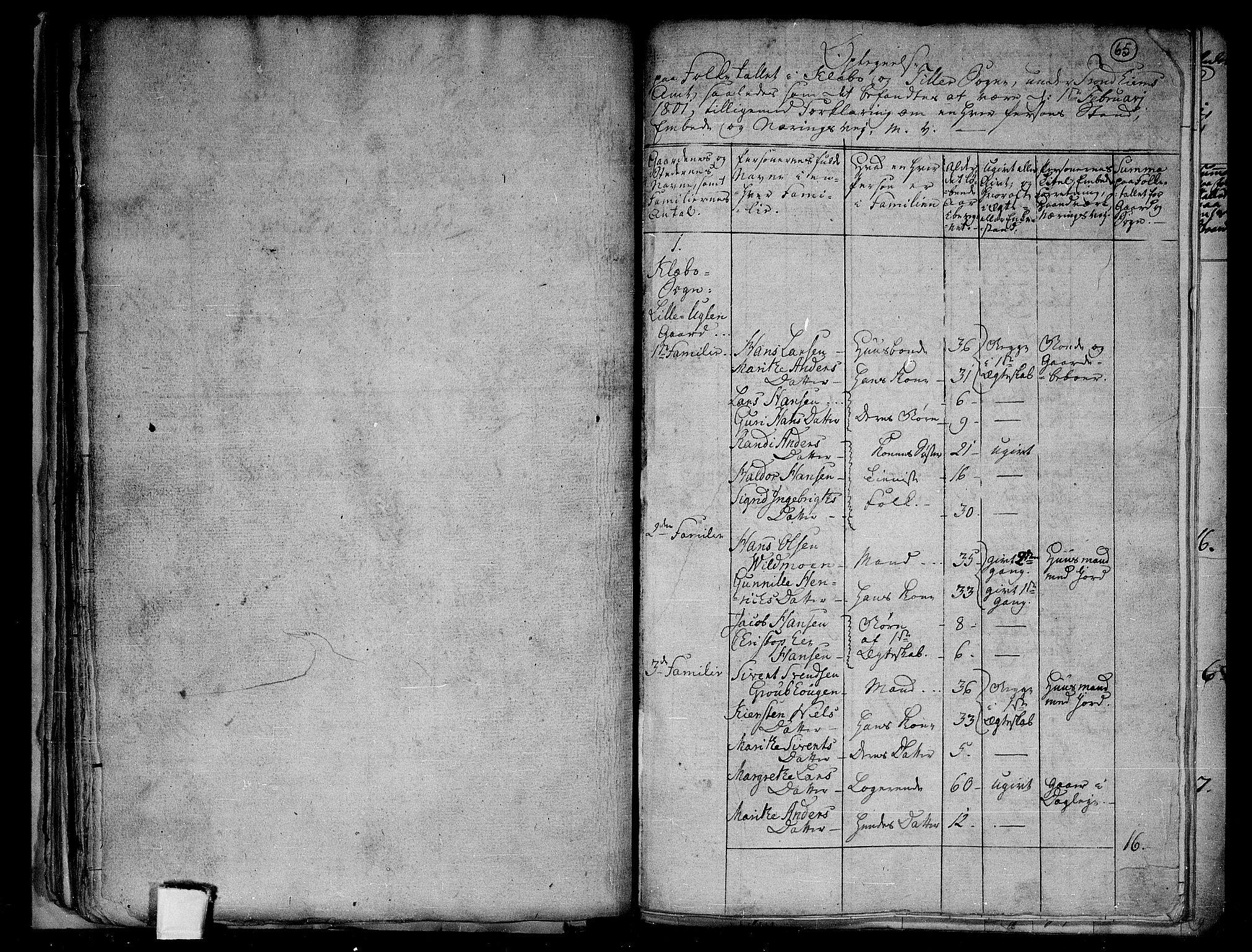 RA, Folketelling 1801 for 1662P Klæbu prestegjeld, 1801, s. 64b-65a