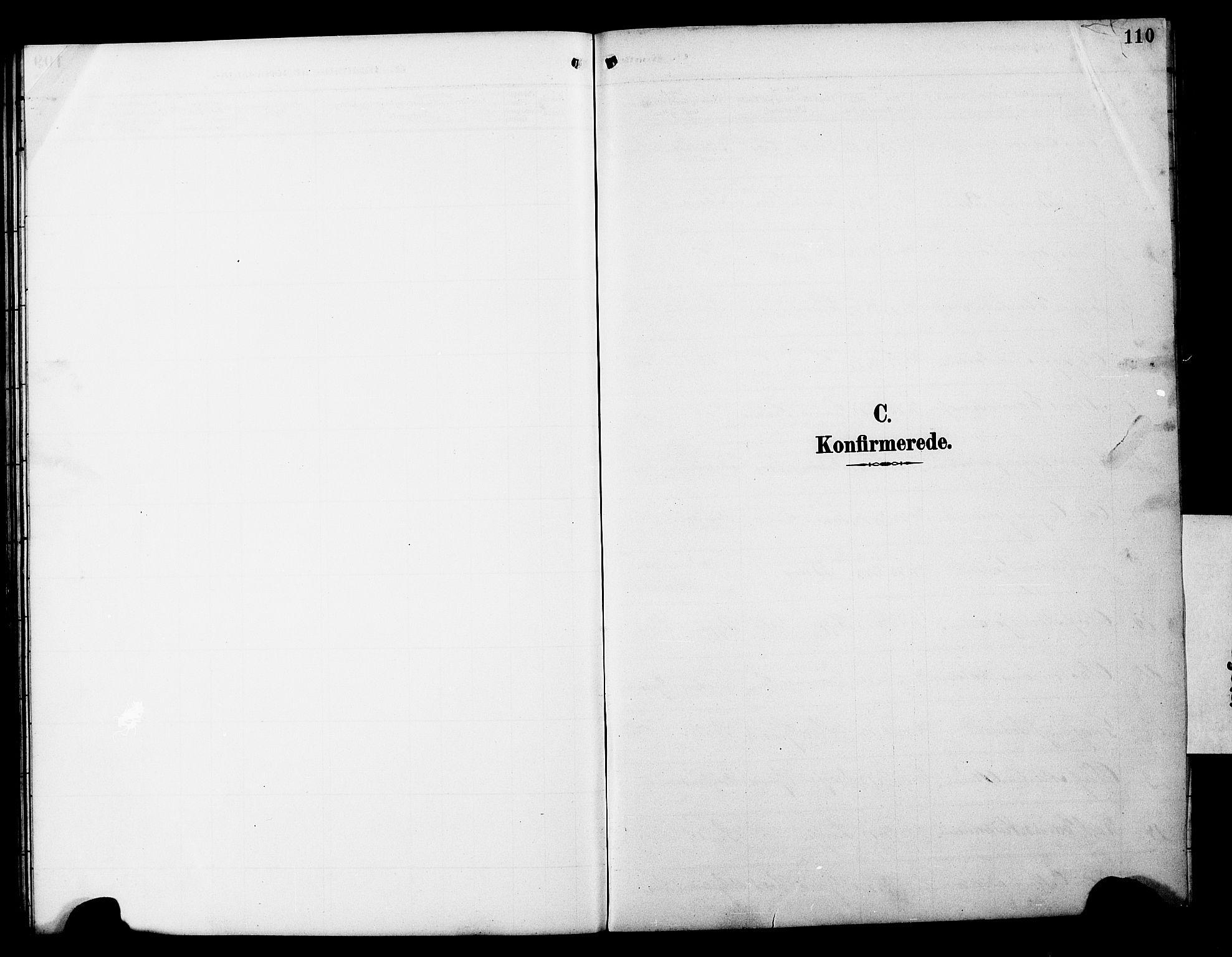 SAT, Ministerialprotokoller, klokkerbøker og fødselsregistre - Nord-Trøndelag, 788/L0701: Klokkerbok nr. 788C01, 1888-1913, s. 110