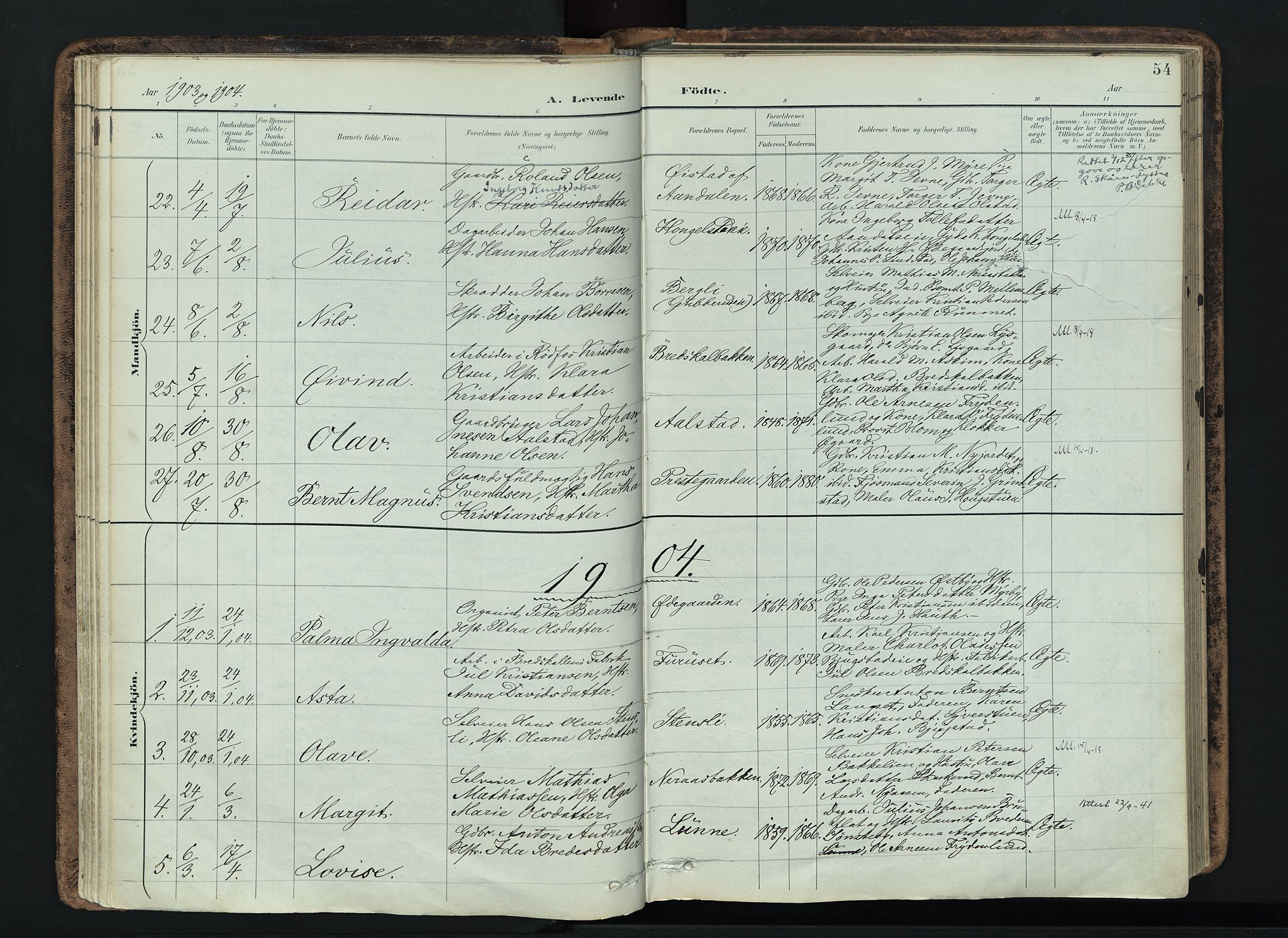 SAH, Vardal prestekontor, H/Ha/Haa/L0019: Ministerialbok nr. 19, 1893-1907, s. 54
