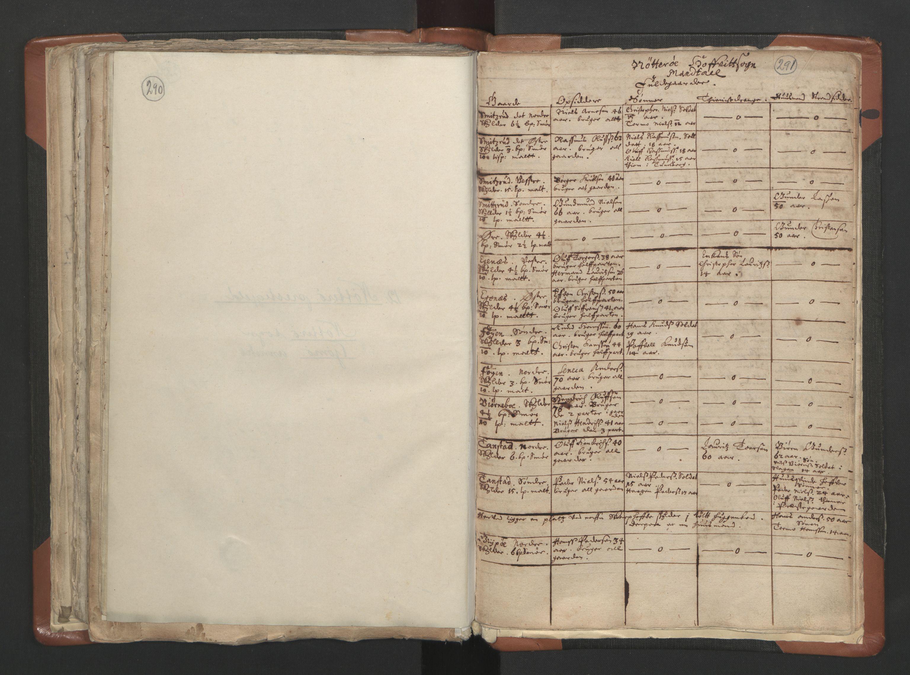 RA, Sogneprestenes manntall 1664-1666, nr. 10: Tønsberg prosti, 1664-1666, s. 290-291