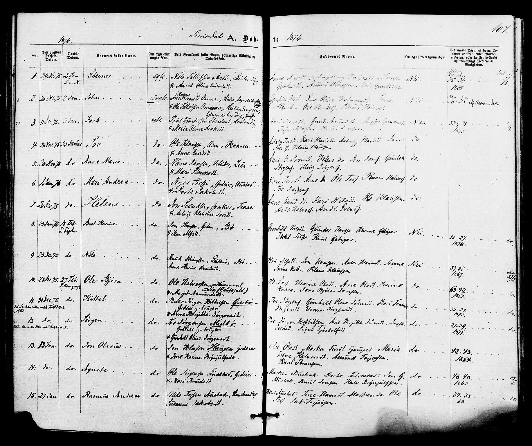 SAKO, Drangedal kirkebøker, F/Fa/L0009: Ministerialbok nr. 9 /2, 1872-1884, s. 107