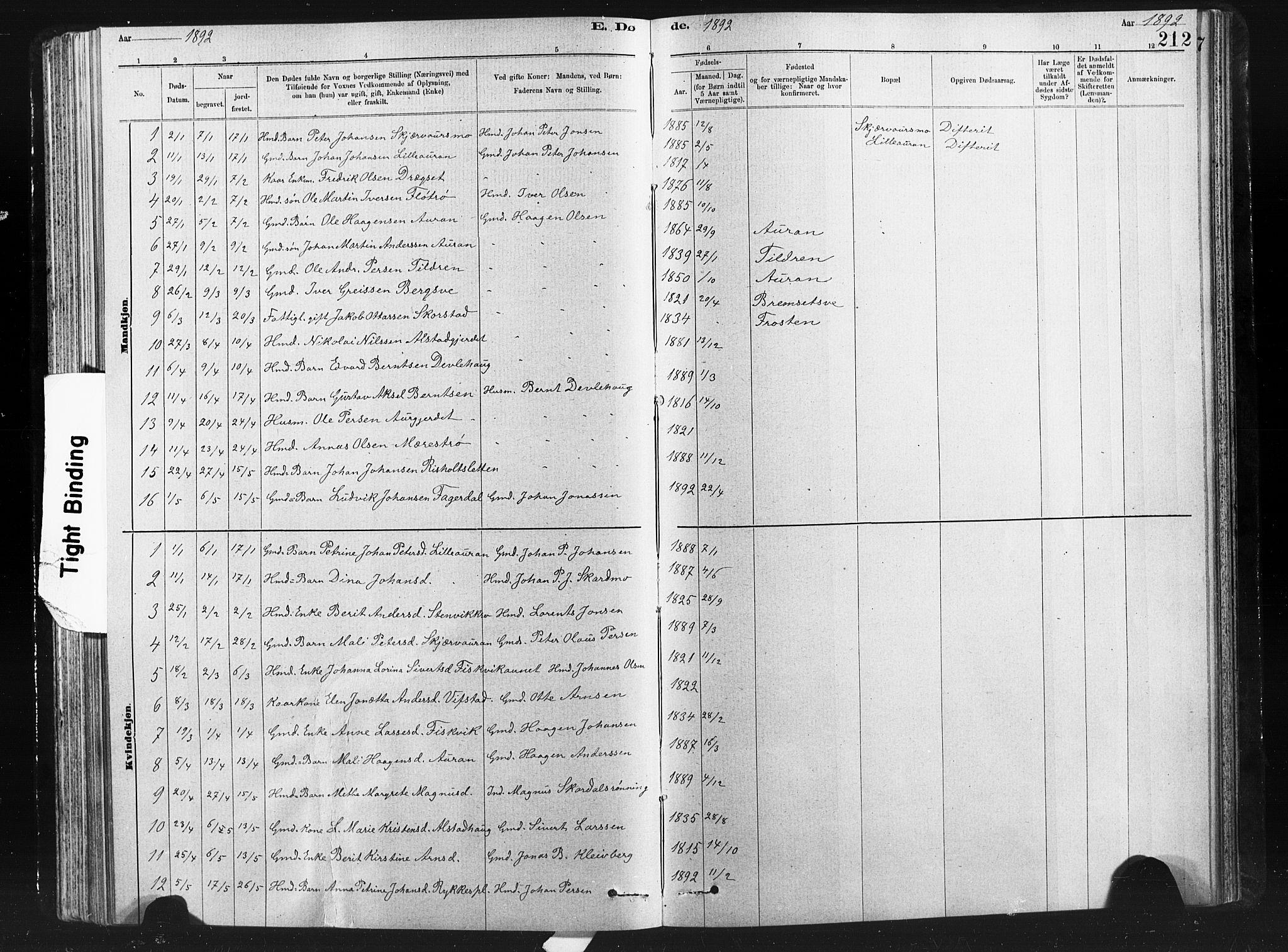 SAT, Ministerialprotokoller, klokkerbøker og fødselsregistre - Nord-Trøndelag, 712/L0103: Klokkerbok nr. 712C01, 1878-1917, s. 212