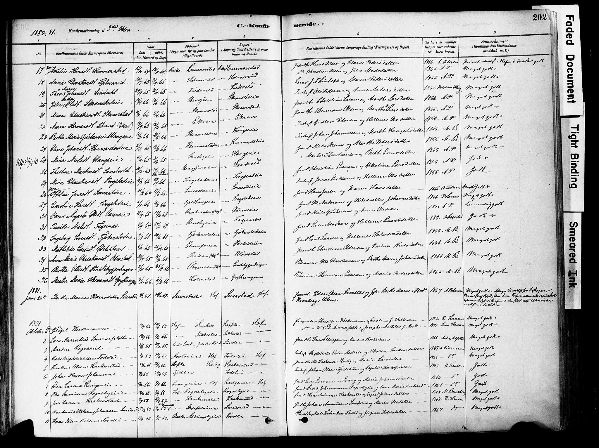 SAH, Østre Toten prestekontor, Ministerialbok nr. 6 /1, 1878-1896, s. 202