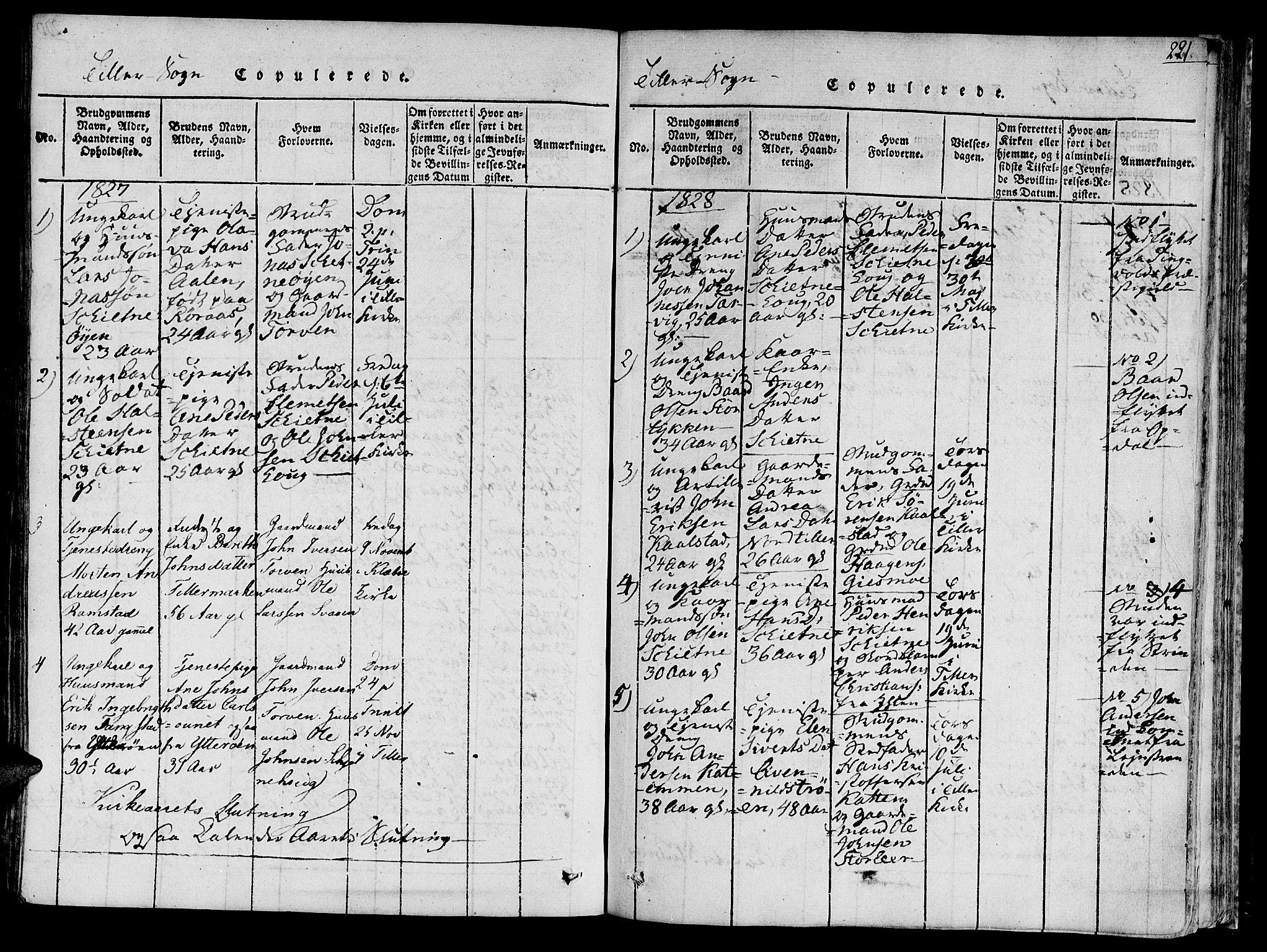 SAT, Ministerialprotokoller, klokkerbøker og fødselsregistre - Sør-Trøndelag, 618/L0440: Ministerialbok nr. 618A04 /2, 1816-1843, s. 221
