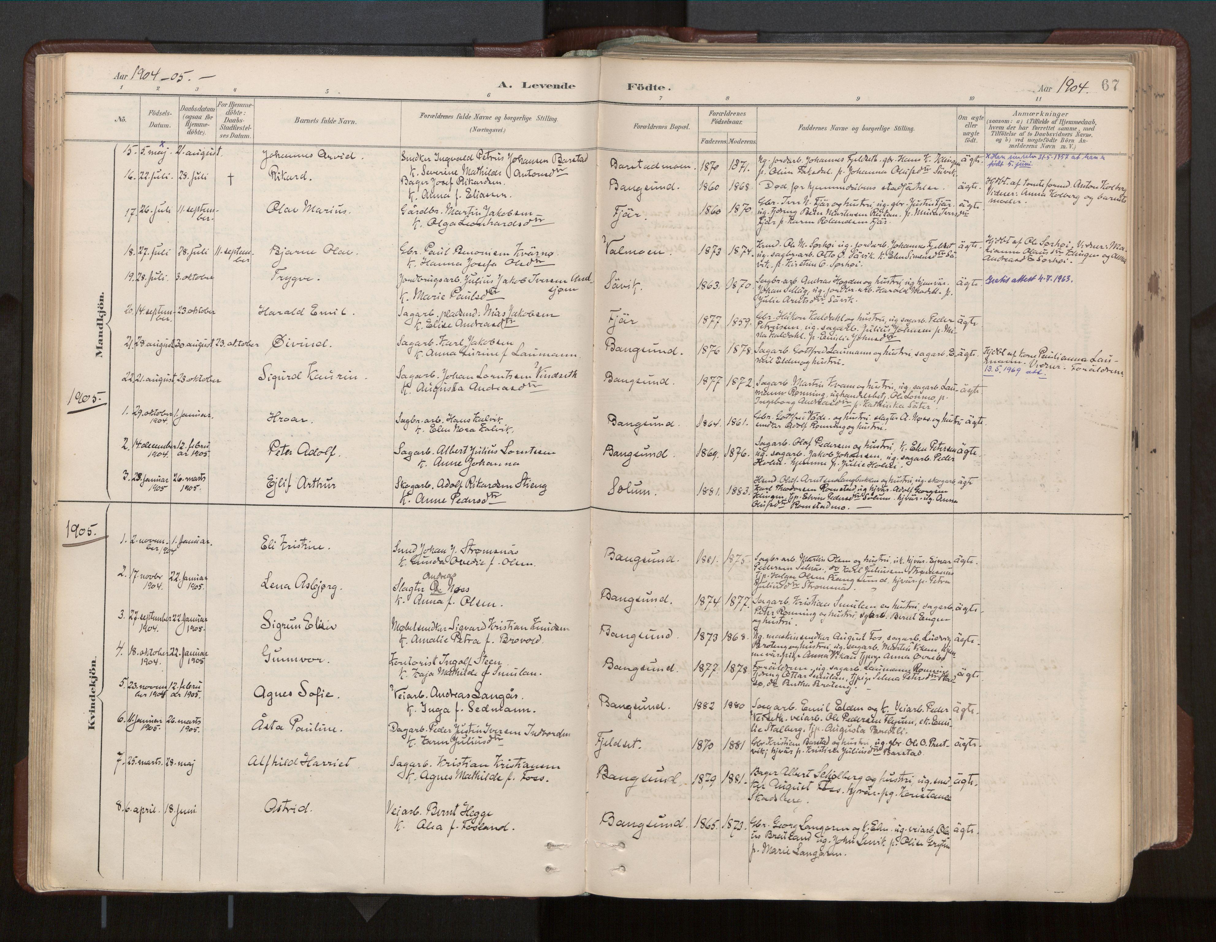 SAT, Ministerialprotokoller, klokkerbøker og fødselsregistre - Nord-Trøndelag, 770/L0589: Ministerialbok nr. 770A03, 1887-1929, s. 67