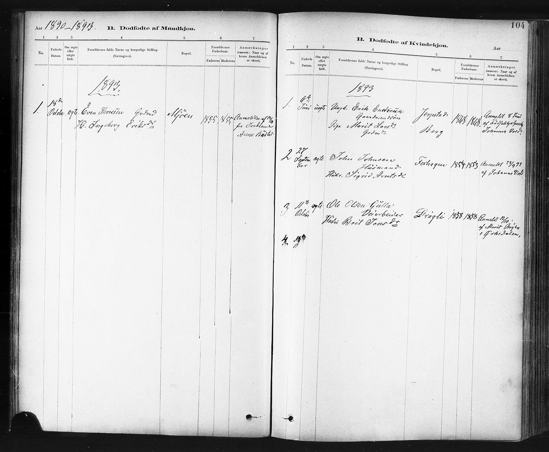 SAT, Ministerialprotokoller, klokkerbøker og fødselsregistre - Sør-Trøndelag, 672/L0857: Ministerialbok nr. 672A09, 1882-1893, s. 104