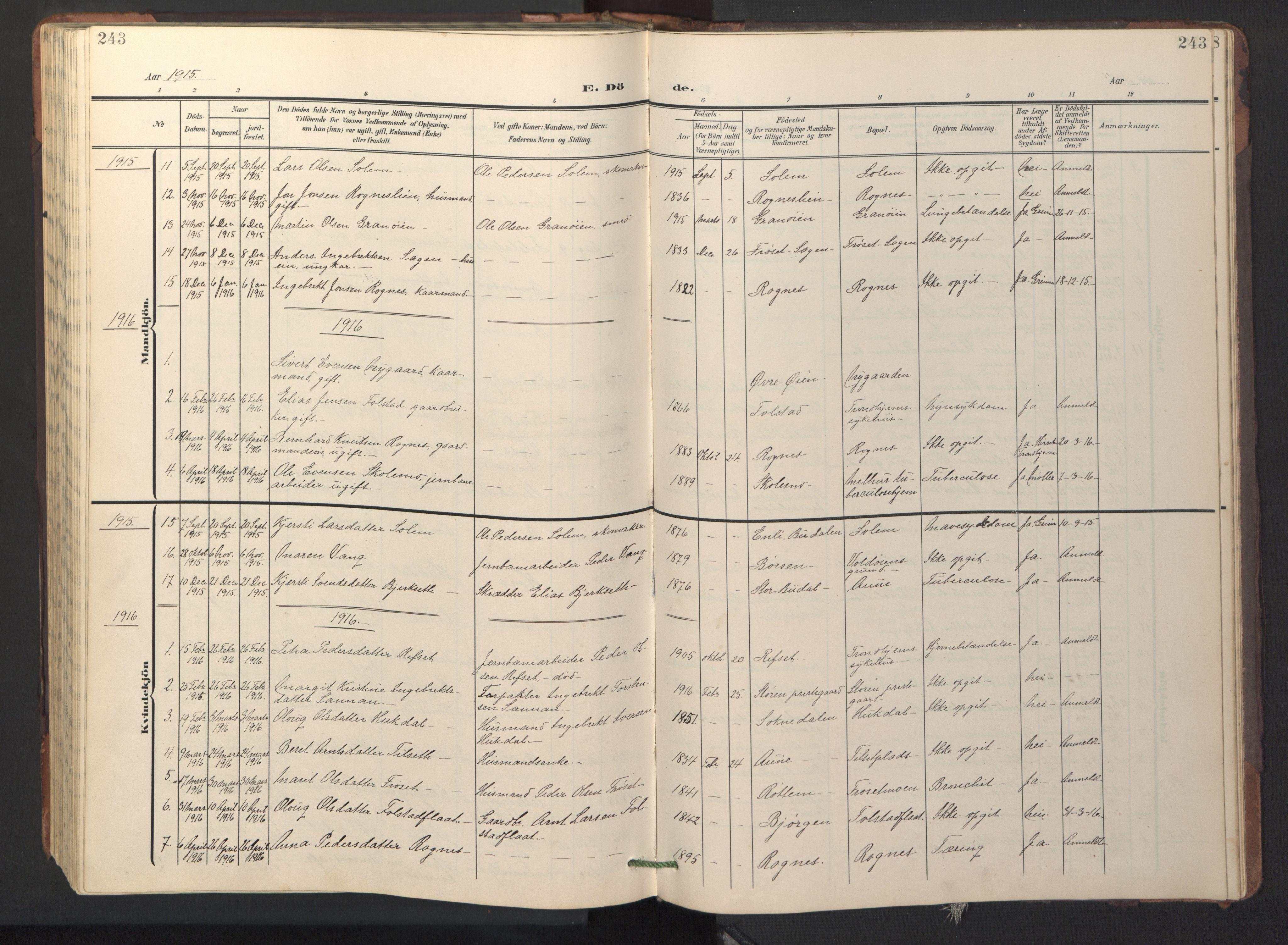 SAT, Ministerialprotokoller, klokkerbøker og fødselsregistre - Sør-Trøndelag, 687/L1019: Klokkerbok nr. 687C03, 1904-1931, s. 243