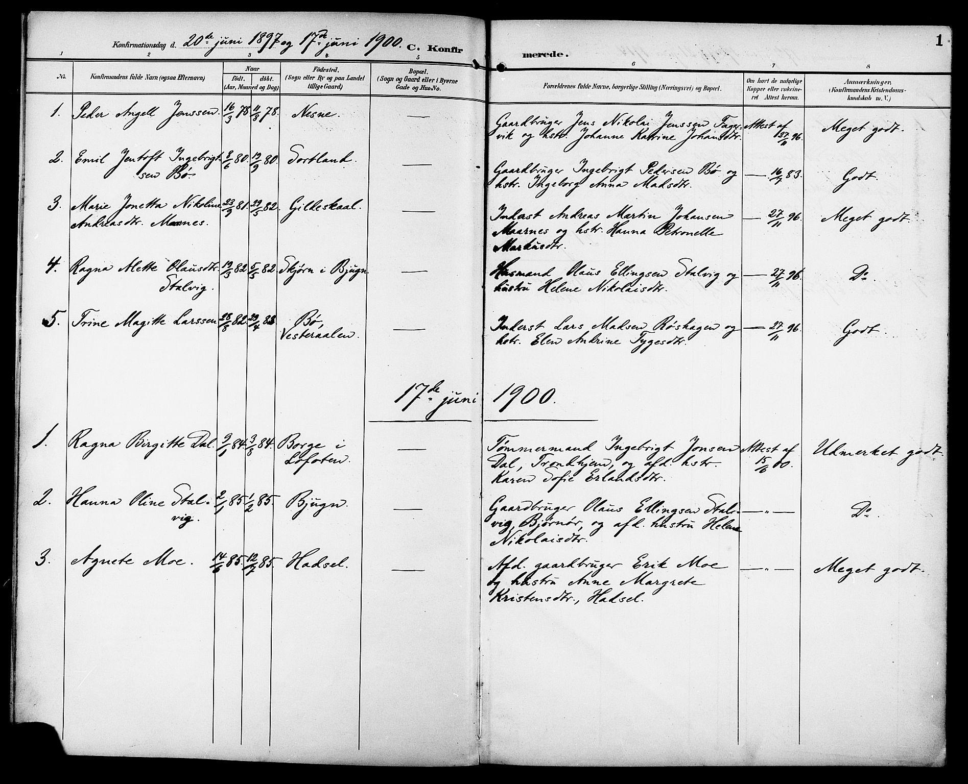 SAT, Ministerialprotokoller, klokkerbøker og fødselsregistre - Sør-Trøndelag, 629/L0486: Ministerialbok nr. 629A02, 1894-1919, s. 1