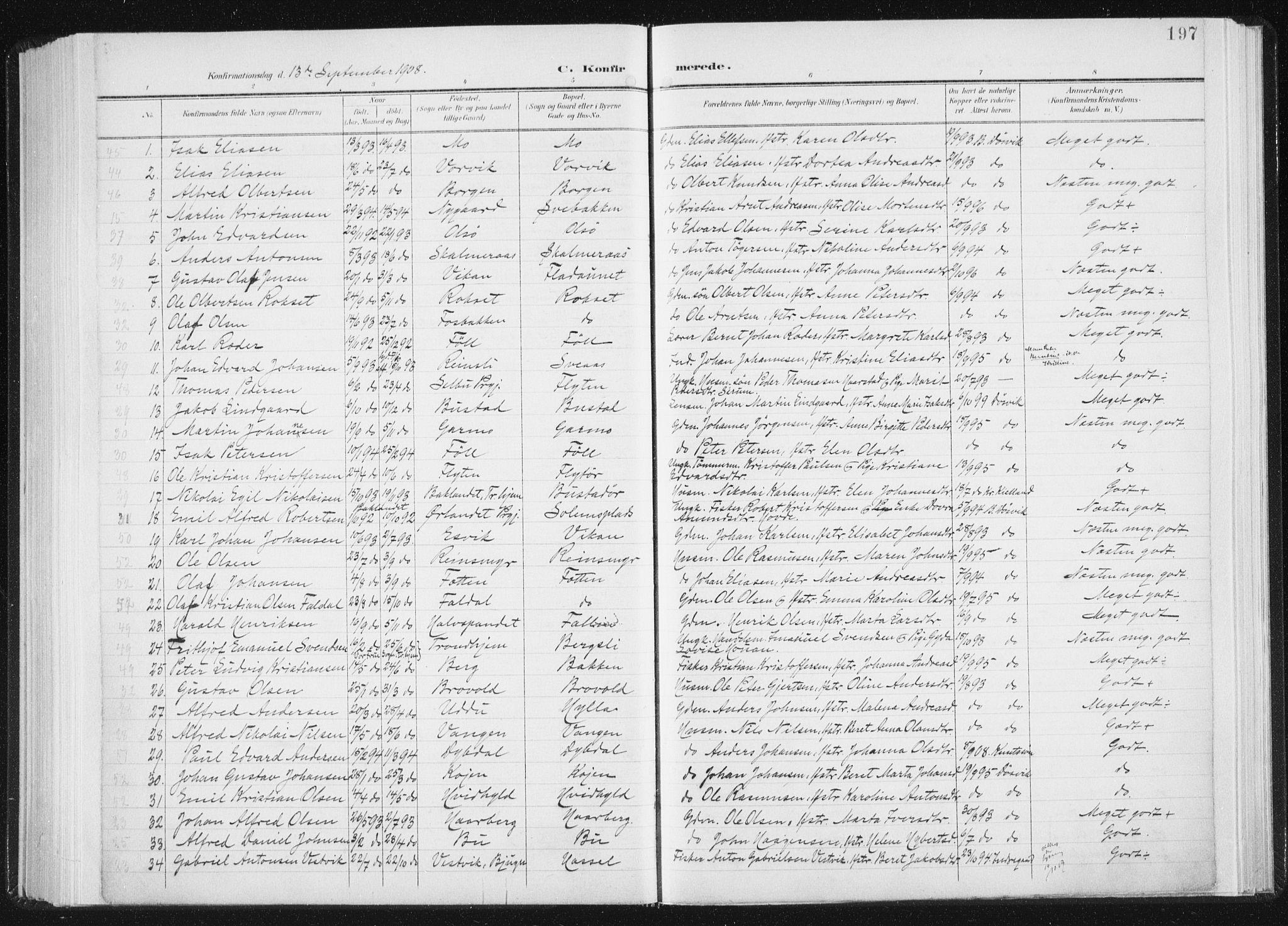 SAT, Ministerialprotokoller, klokkerbøker og fødselsregistre - Sør-Trøndelag, 647/L0635: Ministerialbok nr. 647A02, 1896-1911, s. 197