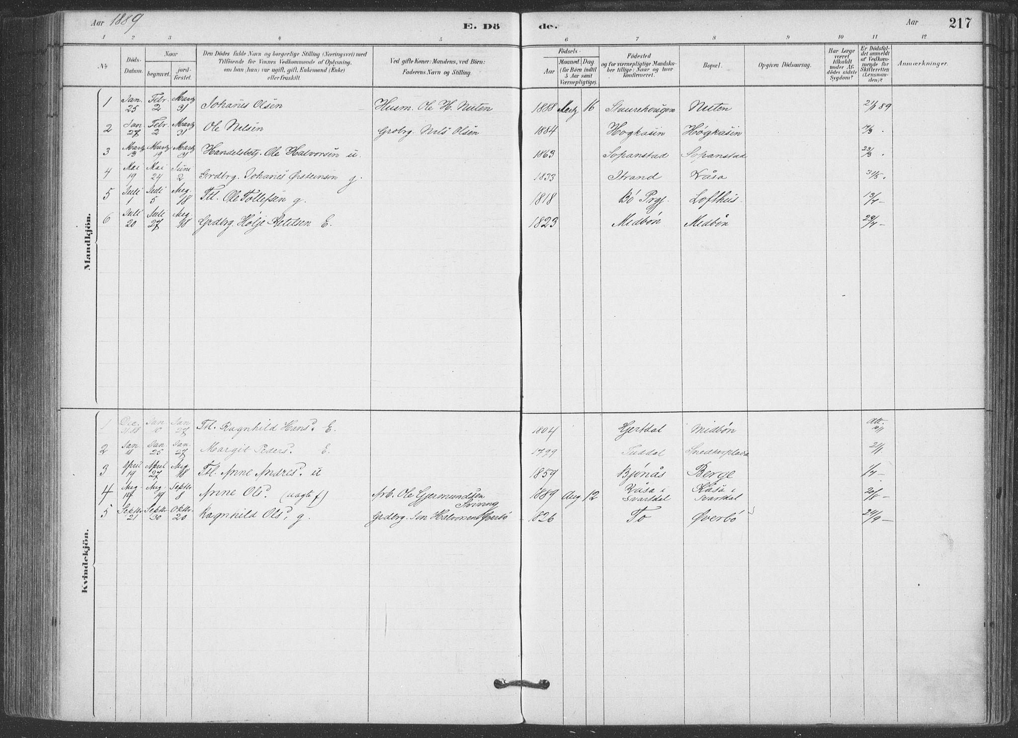 SAKO, Hjartdal kirkebøker, F/Fa/L0010: Ministerialbok nr. I 10, 1880-1929, s. 217