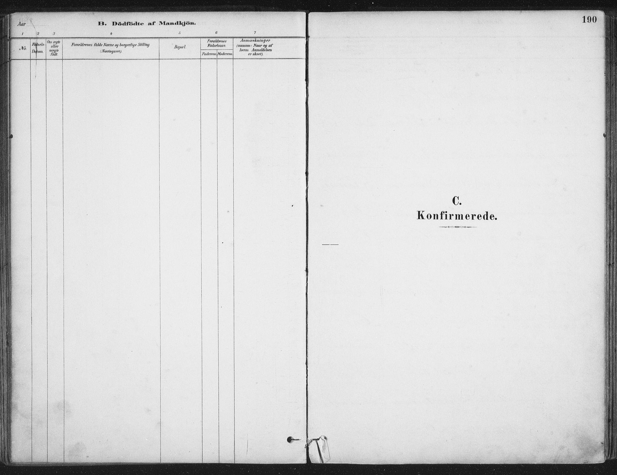 SAT, Ministerialprotokoller, klokkerbøker og fødselsregistre - Nordland, 888/L1244: Ministerialbok nr. 888A10, 1880-1890, s. 190