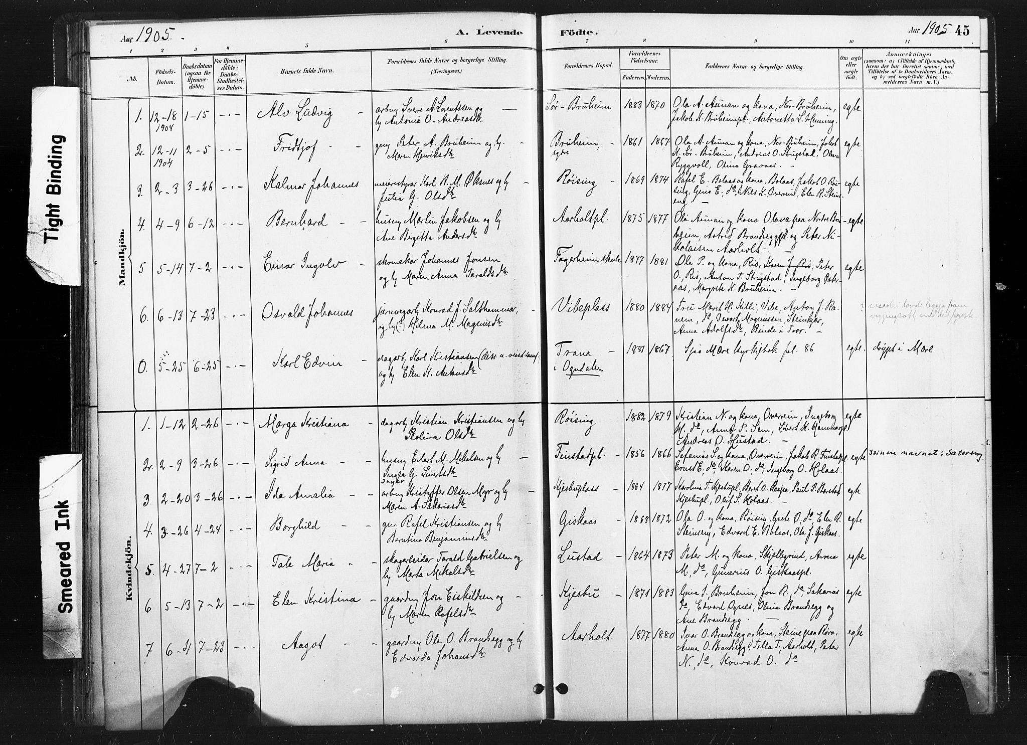 SAT, Ministerialprotokoller, klokkerbøker og fødselsregistre - Nord-Trøndelag, 736/L0361: Ministerialbok nr. 736A01, 1884-1906, s. 45