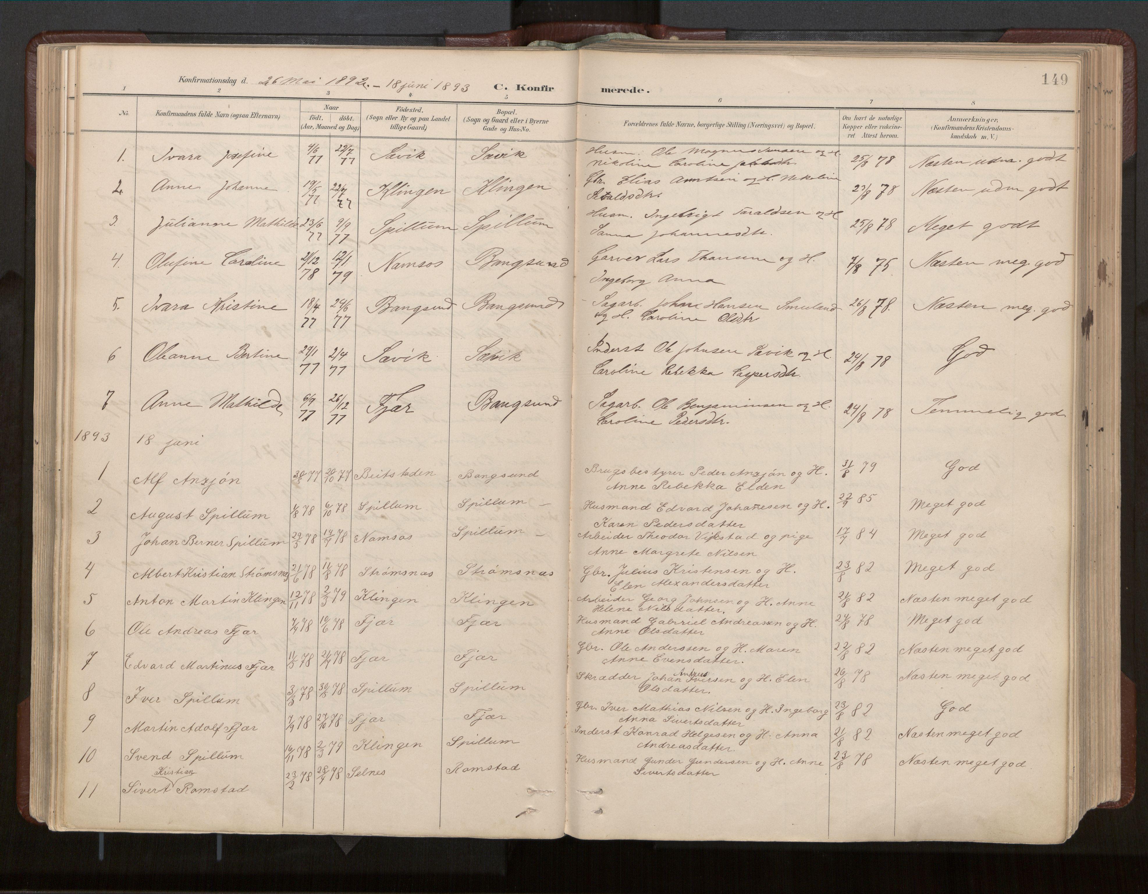SAT, Ministerialprotokoller, klokkerbøker og fødselsregistre - Nord-Trøndelag, 770/L0589: Ministerialbok nr. 770A03, 1887-1929, s. 149