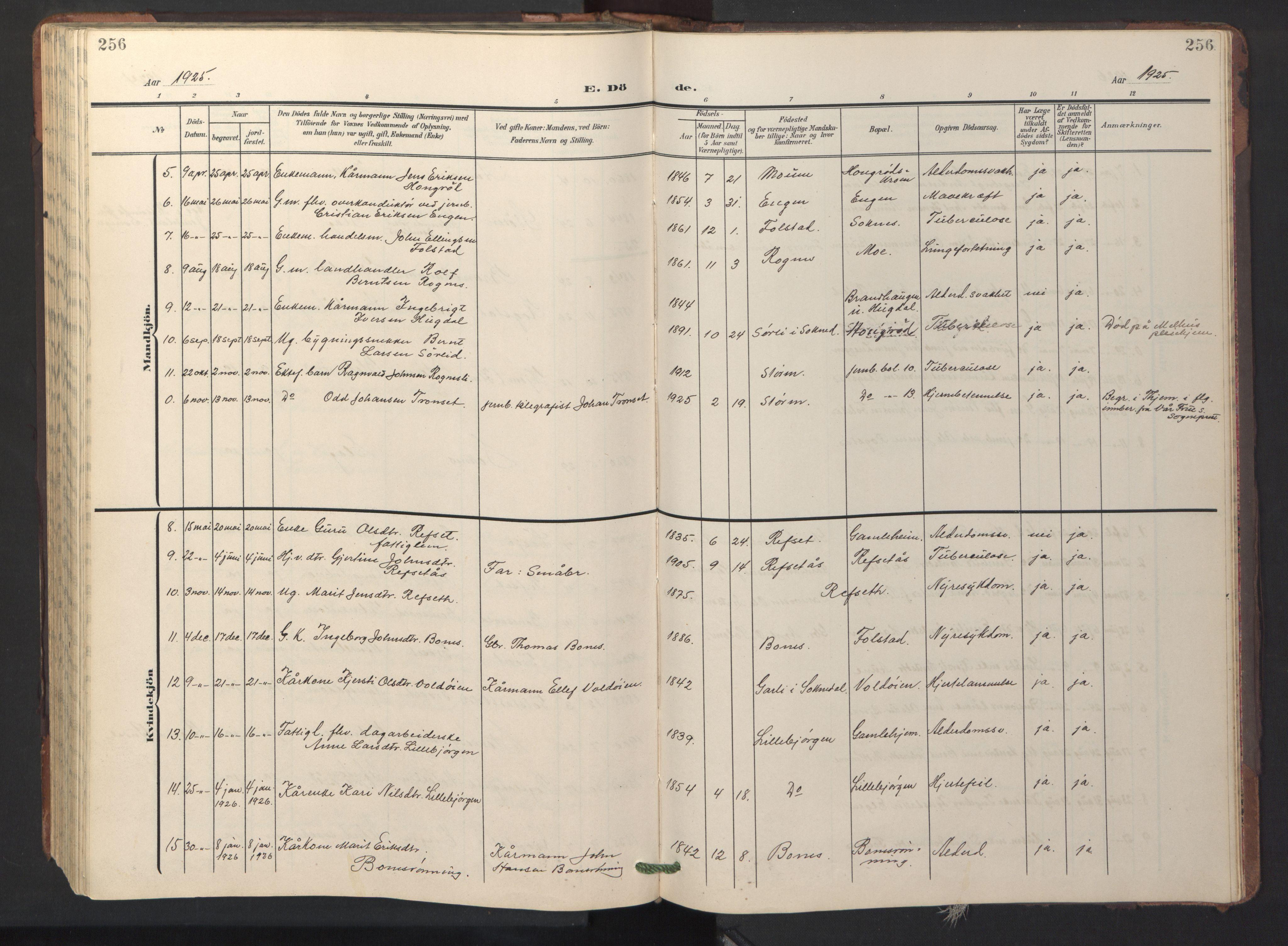 SAT, Ministerialprotokoller, klokkerbøker og fødselsregistre - Sør-Trøndelag, 687/L1019: Klokkerbok nr. 687C03, 1904-1931, s. 256