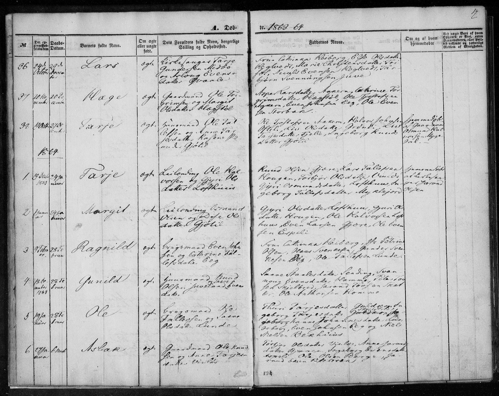 SAKO, Lårdal kirkebøker, F/Fa/L0006: Ministerialbok nr. I 6, 1861-1886, s. 17