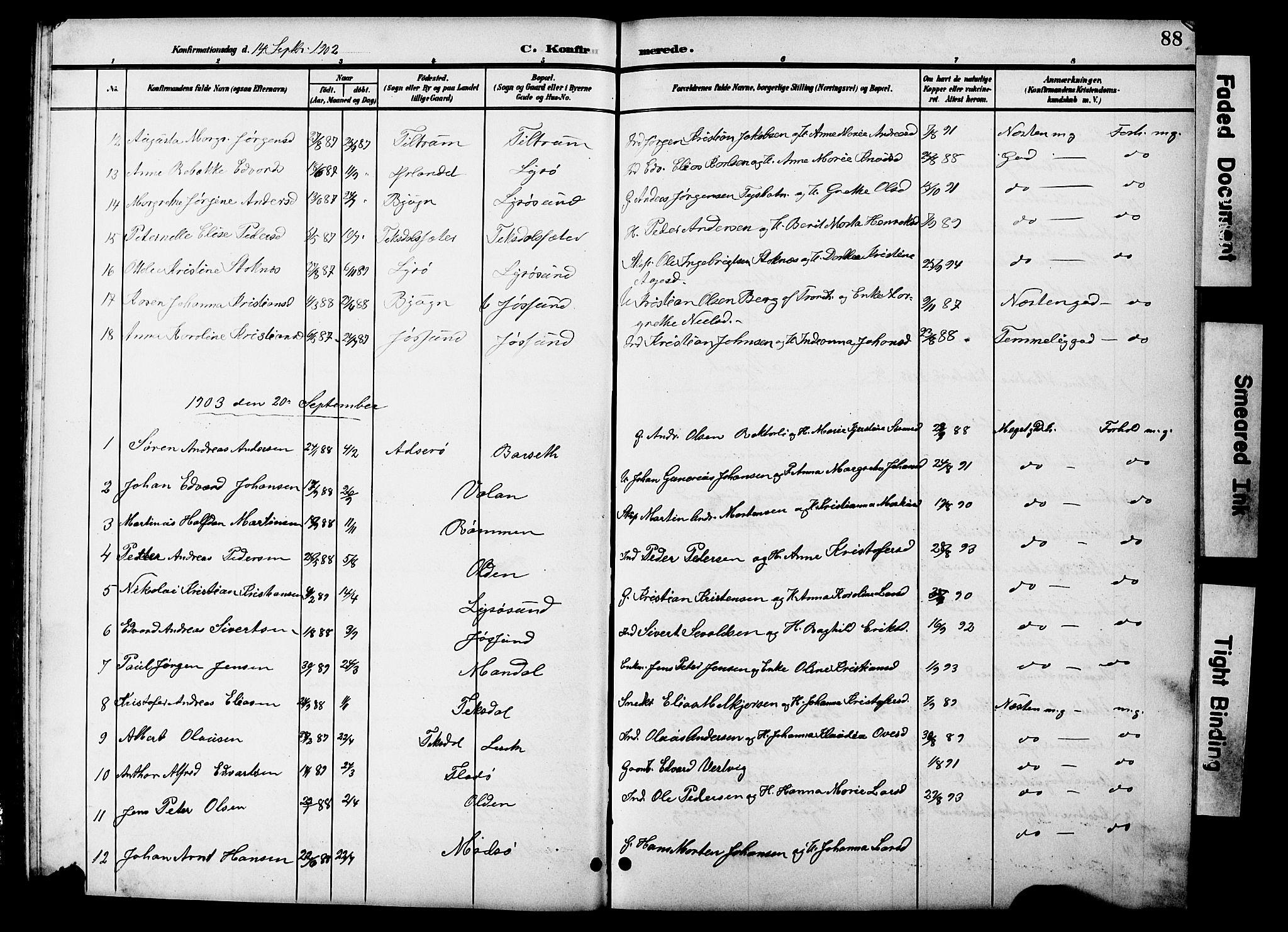 SAT, Ministerialprotokoller, klokkerbøker og fødselsregistre - Sør-Trøndelag, 654/L0666: Klokkerbok nr. 654C02, 1901-1925, s. 88