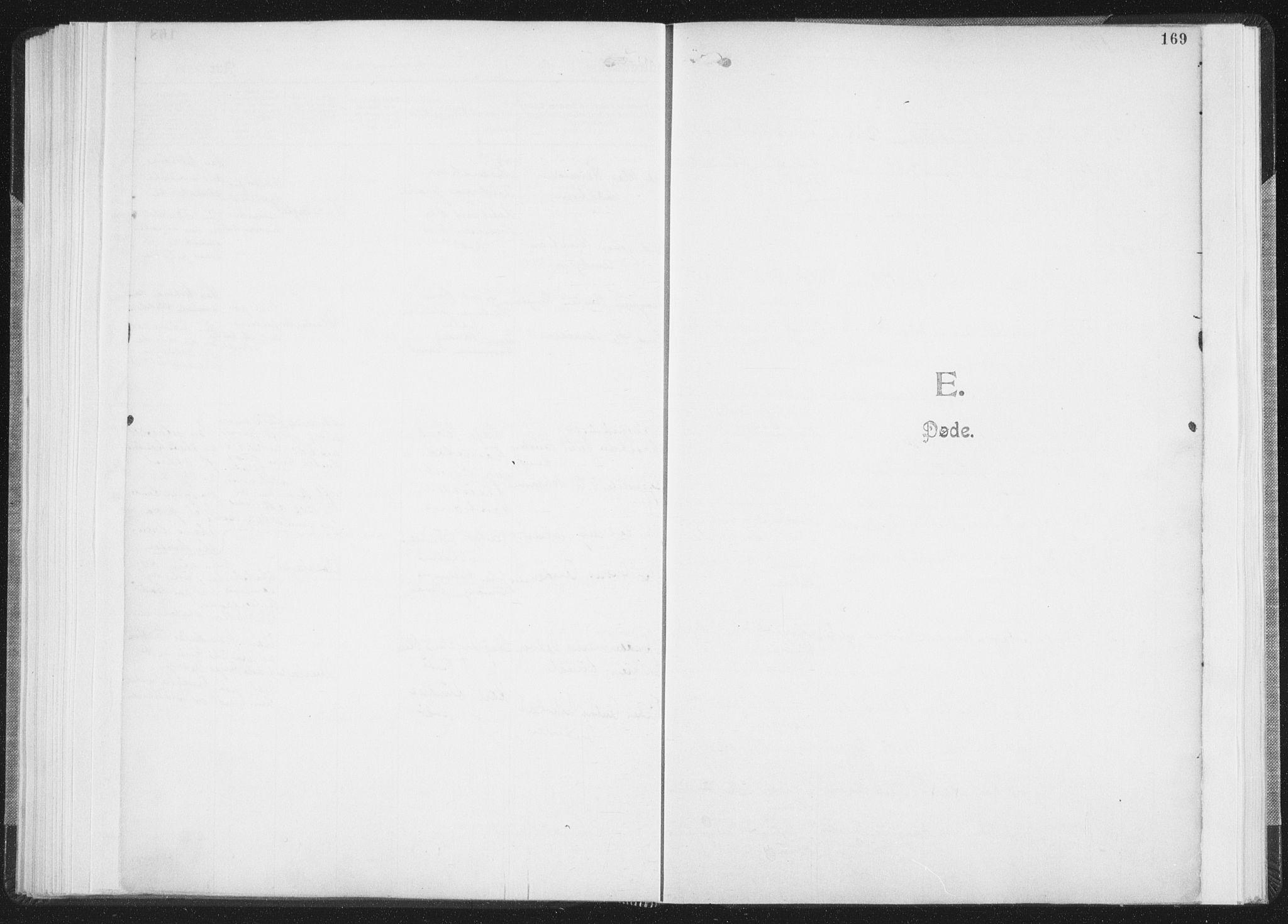 SAT, Ministerialprotokoller, klokkerbøker og fødselsregistre - Nordland, 850/L0711: Residerende kapellans bok nr. 850B01, 1902-1915, s. 169