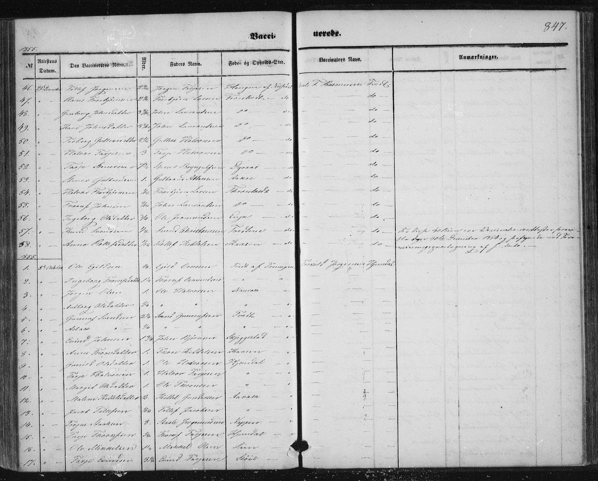 SAKO, Nissedal kirkebøker, F/Fa/L0003: Ministerialbok nr. I 3, 1846-1870, s. 846-847