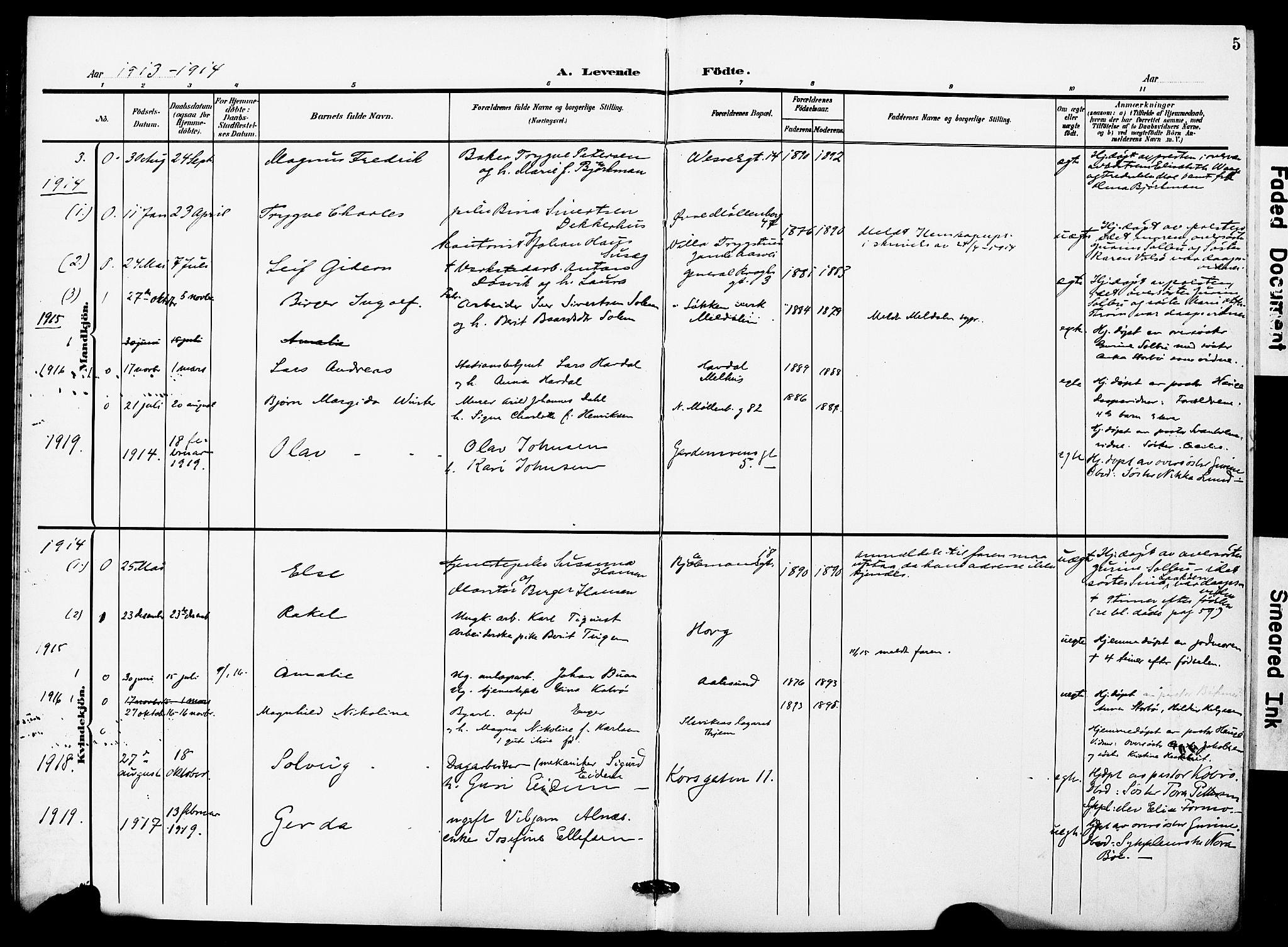 SAT, Ministerialprotokoller, klokkerbøker og fødselsregistre - Sør-Trøndelag, 628/L0483: Ministerialbok nr. 628A01, 1902-1920, s. 5