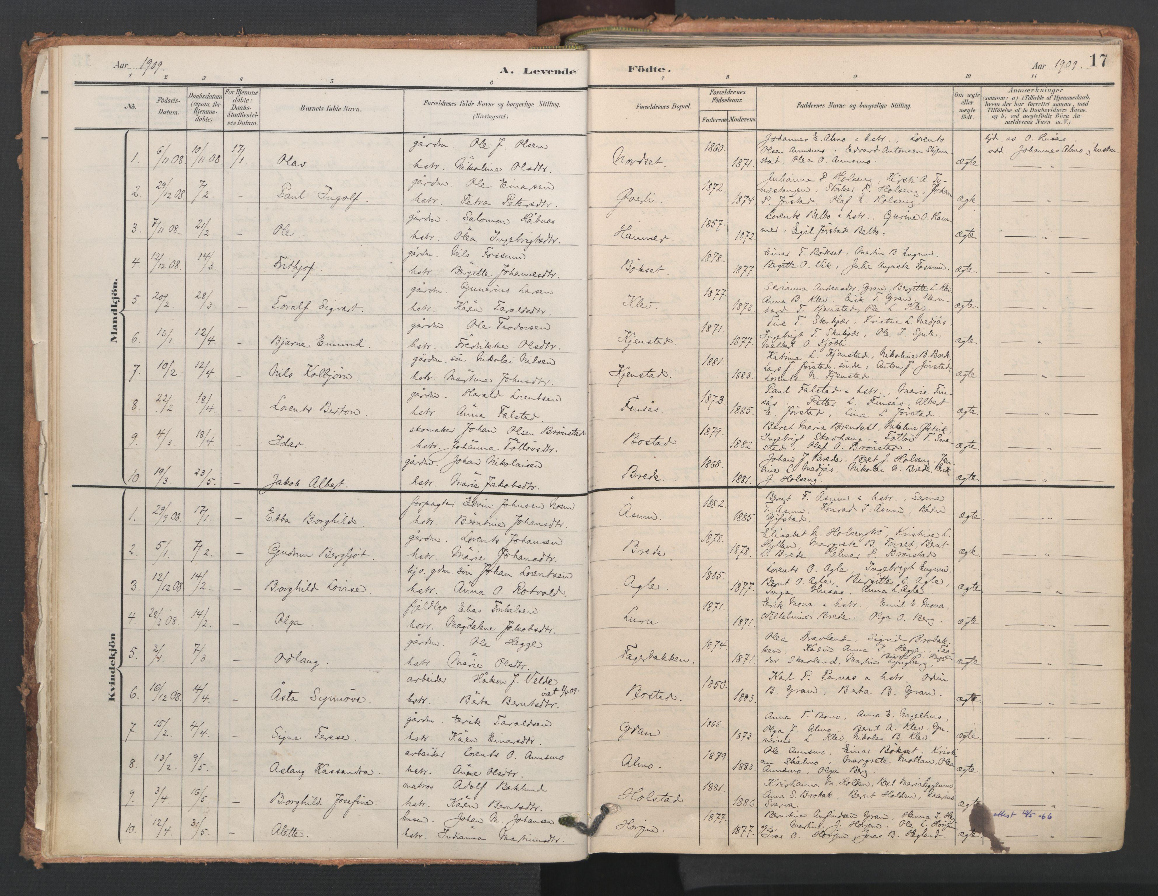 SAT, Ministerialprotokoller, klokkerbøker og fødselsregistre - Nord-Trøndelag, 749/L0477: Ministerialbok nr. 749A11, 1902-1927, s. 17