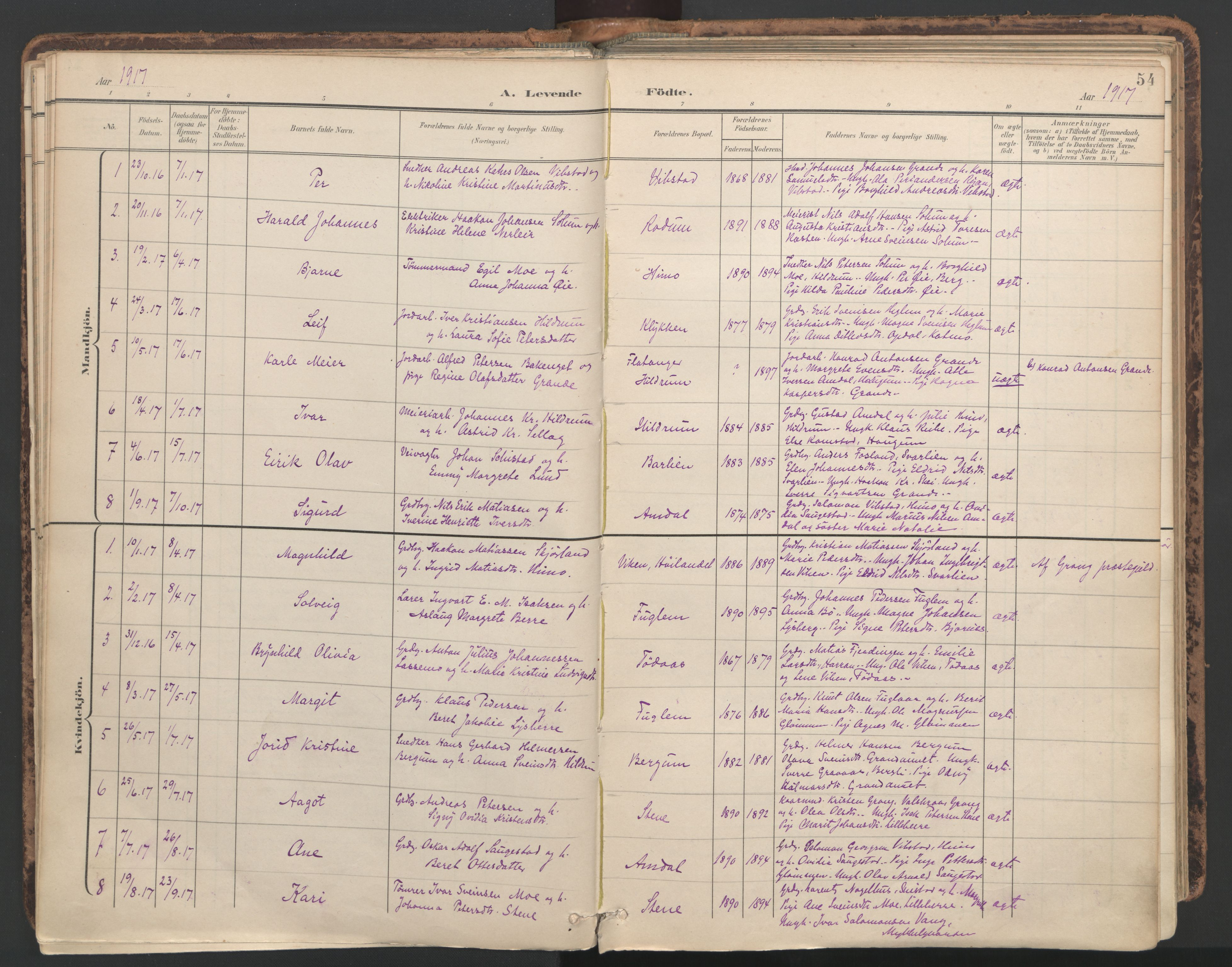 SAT, Ministerialprotokoller, klokkerbøker og fødselsregistre - Nord-Trøndelag, 764/L0556: Ministerialbok nr. 764A11, 1897-1924, s. 54