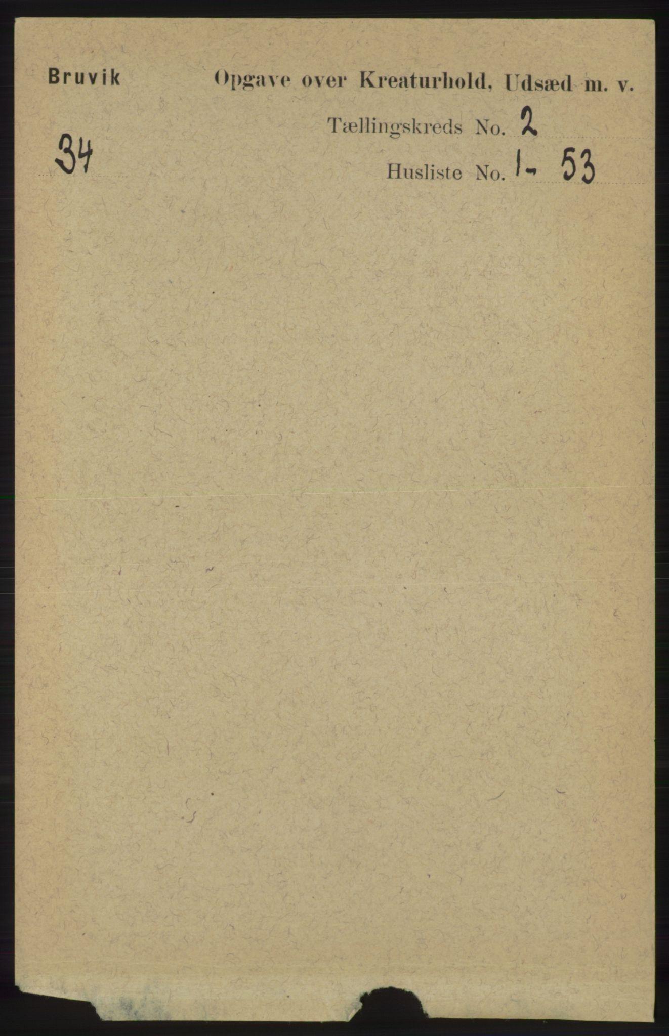 RA, Folketelling 1891 for 1251 Bruvik herred, 1891, s. 4231