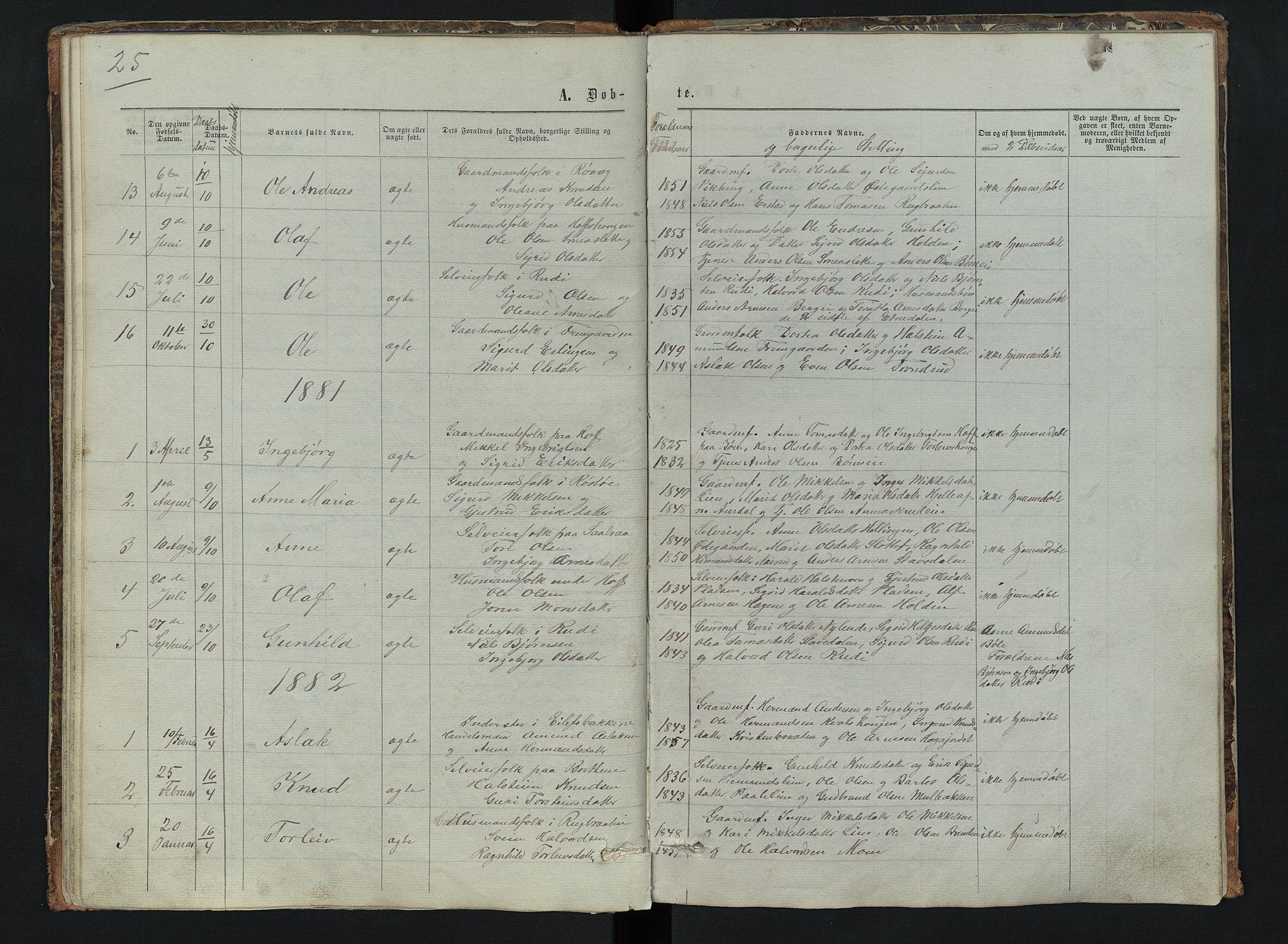 SAH, Sør-Aurdal prestekontor, Klokkerbok nr. 6, 1866-1893, s. 25