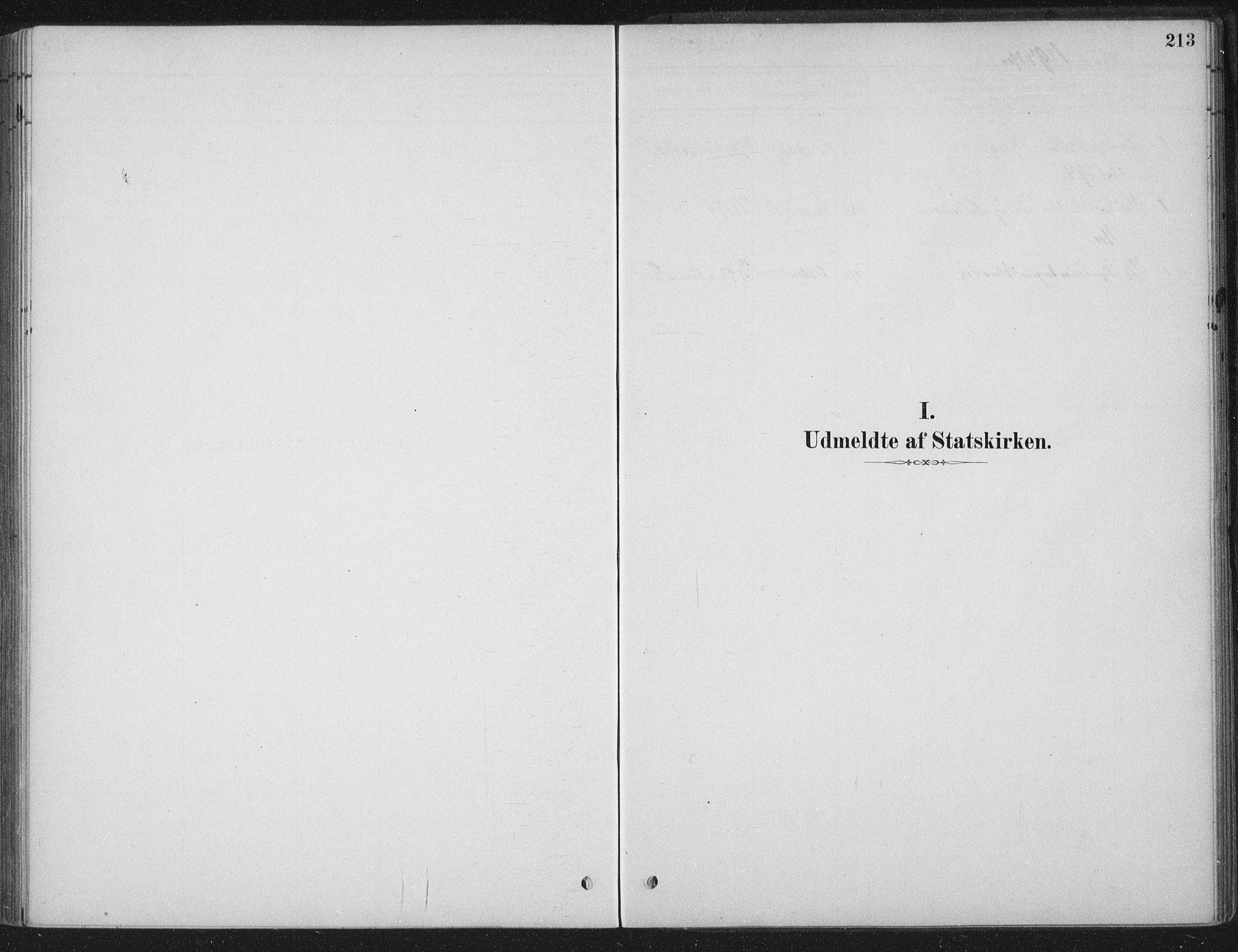 SAT, Ministerialprotokoller, klokkerbøker og fødselsregistre - Sør-Trøndelag, 662/L0755: Ministerialbok nr. 662A01, 1879-1905, s. 213