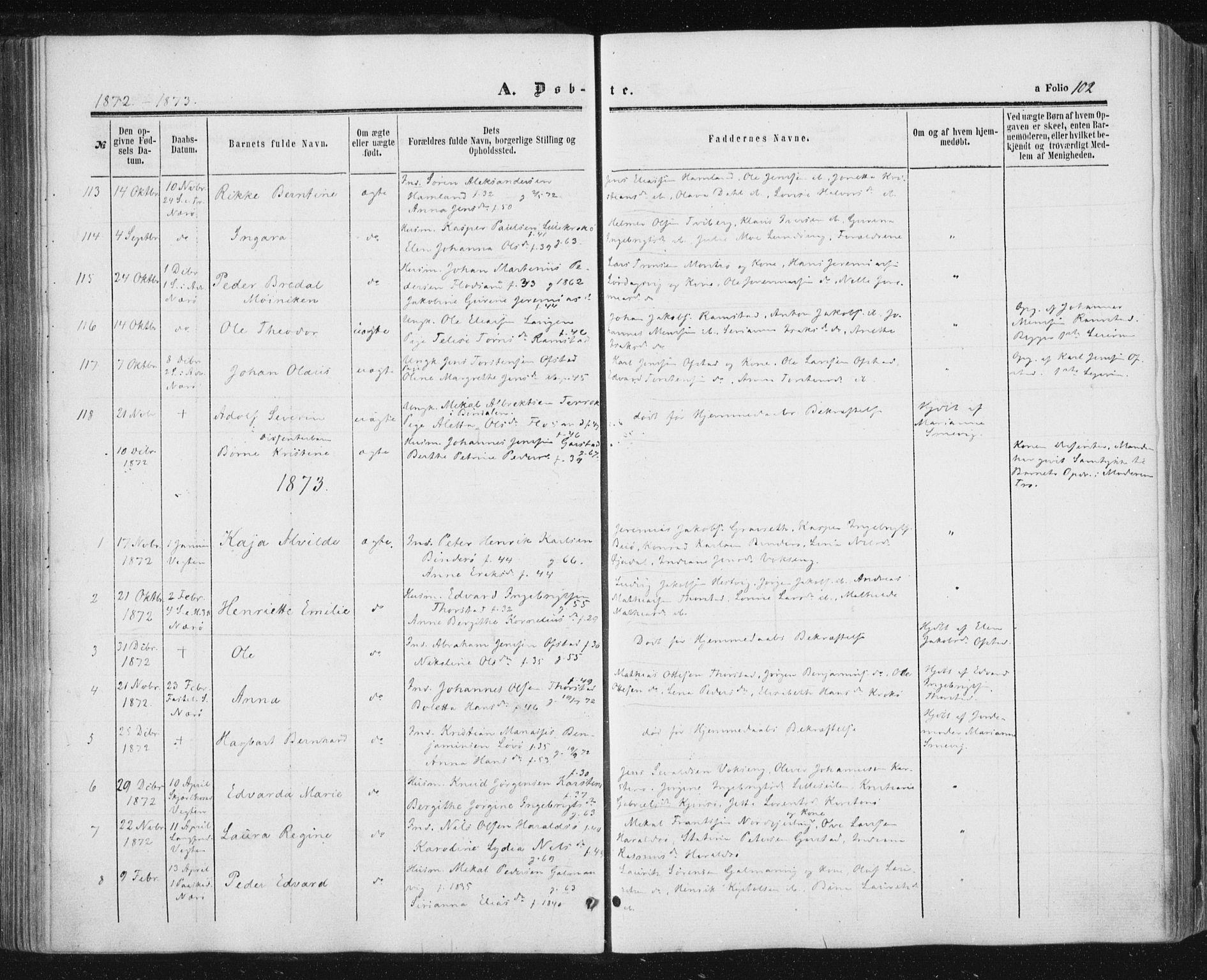 SAT, Ministerialprotokoller, klokkerbøker og fødselsregistre - Nord-Trøndelag, 784/L0670: Ministerialbok nr. 784A05, 1860-1876, s. 102