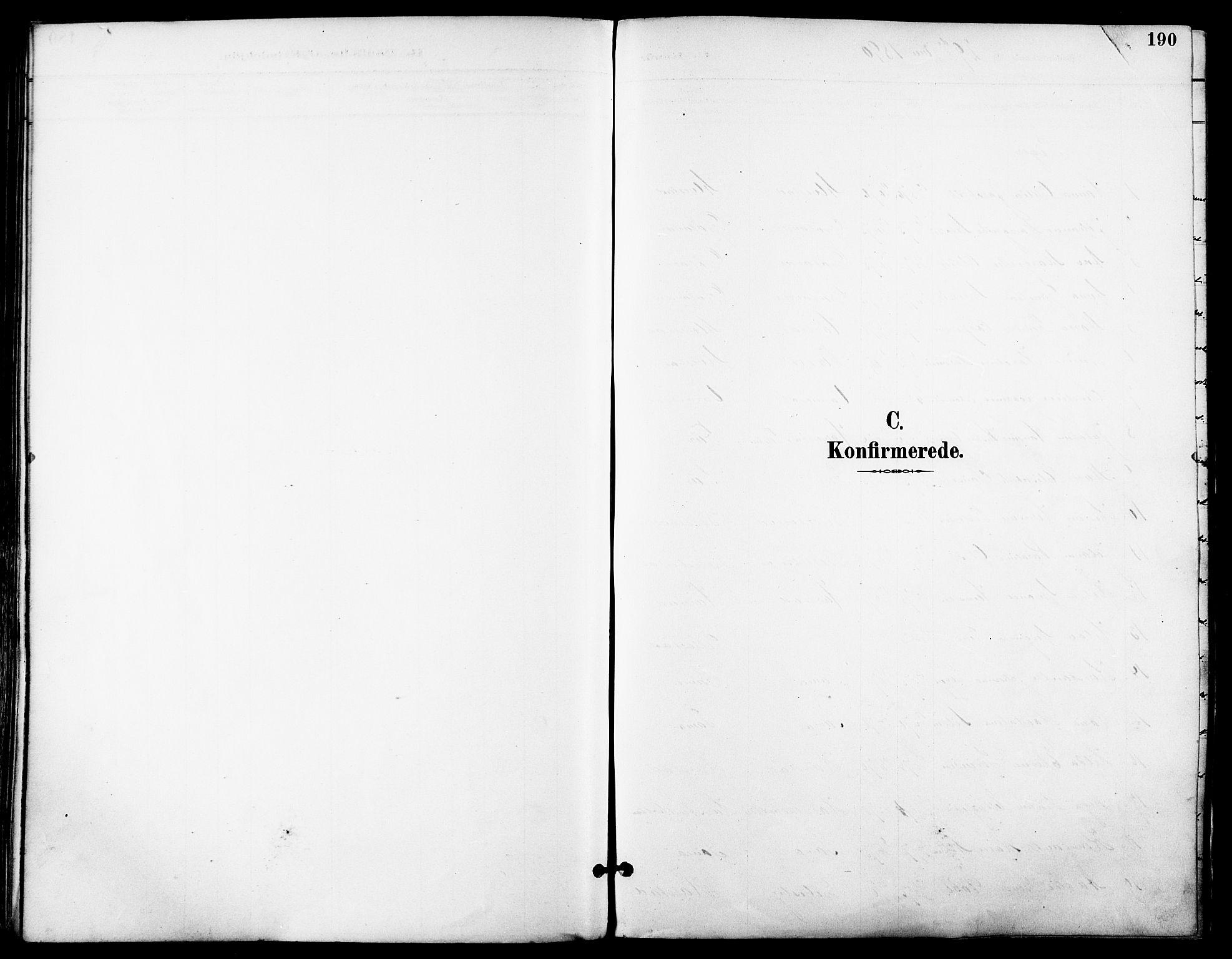 SATØ, Trondenes sokneprestkontor, H/Ha/L0016kirke: Ministerialbok nr. 16, 1890-1898, s. 190