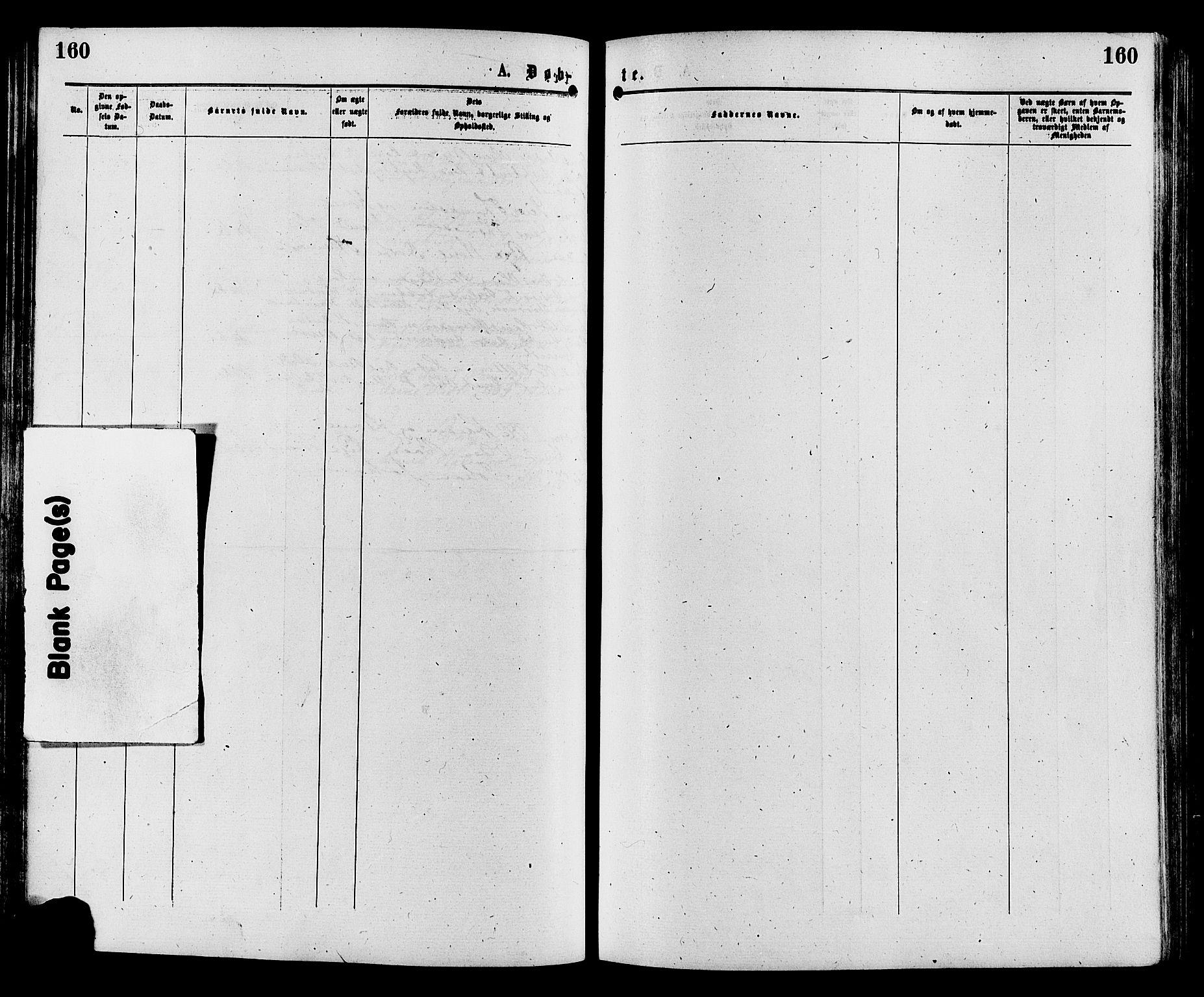 SAH, Sør-Aurdal prestekontor, Ministerialbok nr. 8, 1877-1885, s. 160