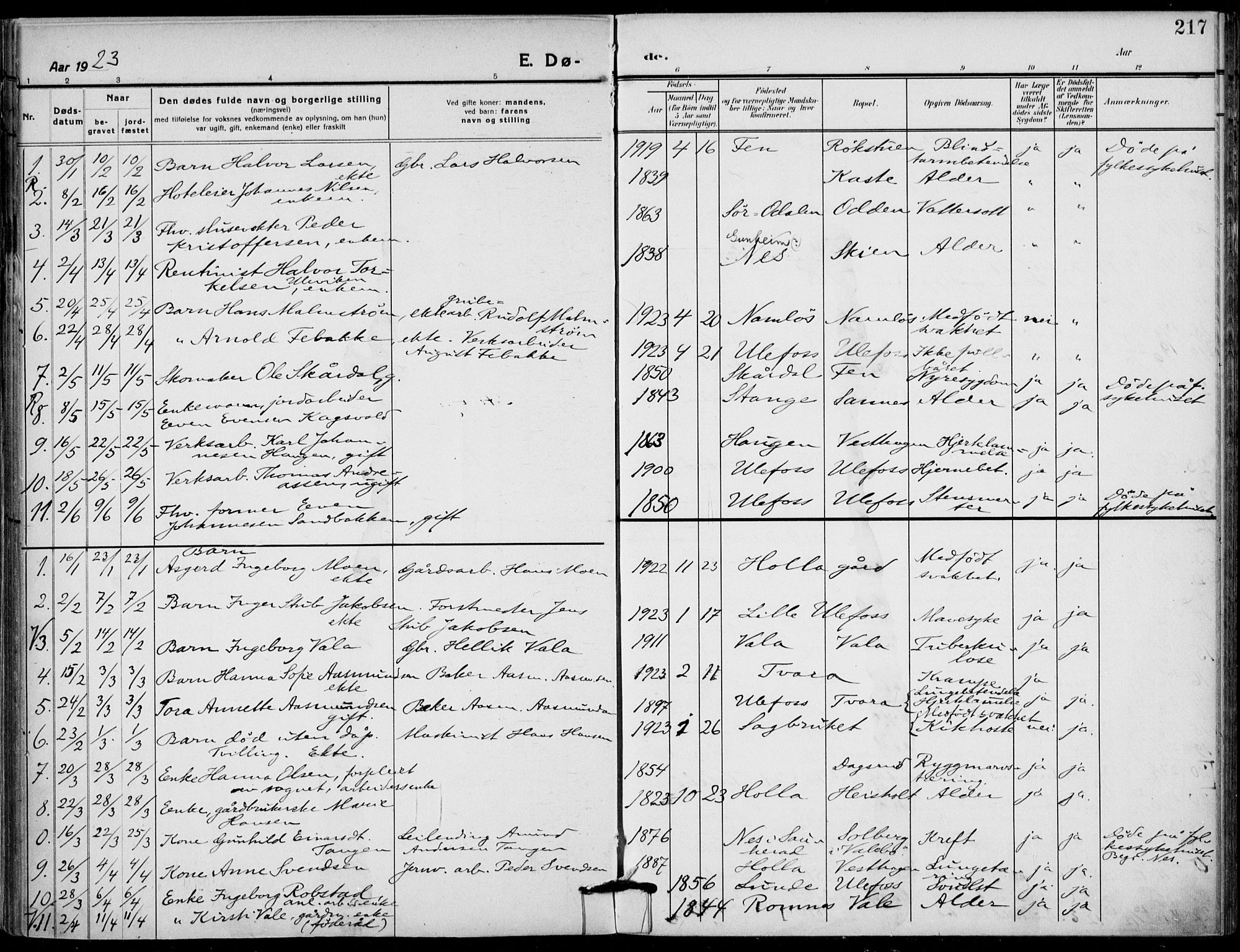 SAKO, Holla kirkebøker, F/Fa/L0012: Ministerialbok nr. 12, 1907-1923, s. 217