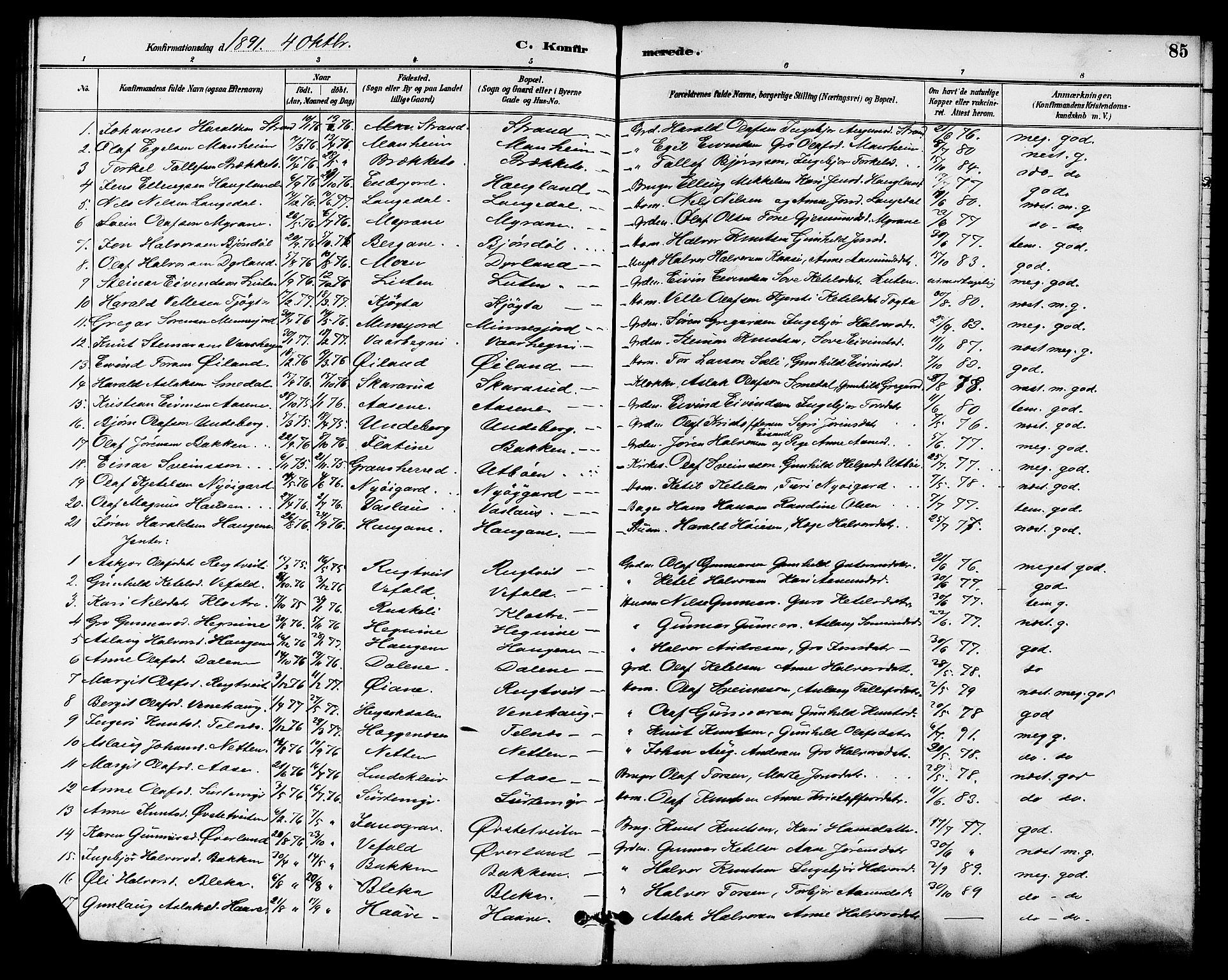 SAKO, Seljord kirkebøker, G/Ga/L0005: Klokkerbok nr. I 5, 1887-1914, s. 85