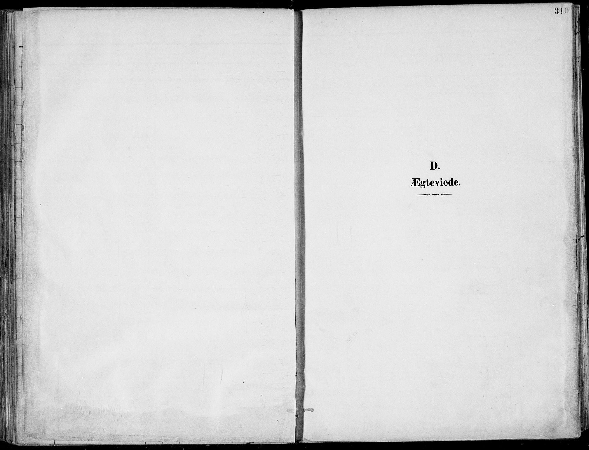 SAKO, Porsgrunn kirkebøker , F/Fa/L0011: Ministerialbok nr. 11, 1895-1919, s. 310